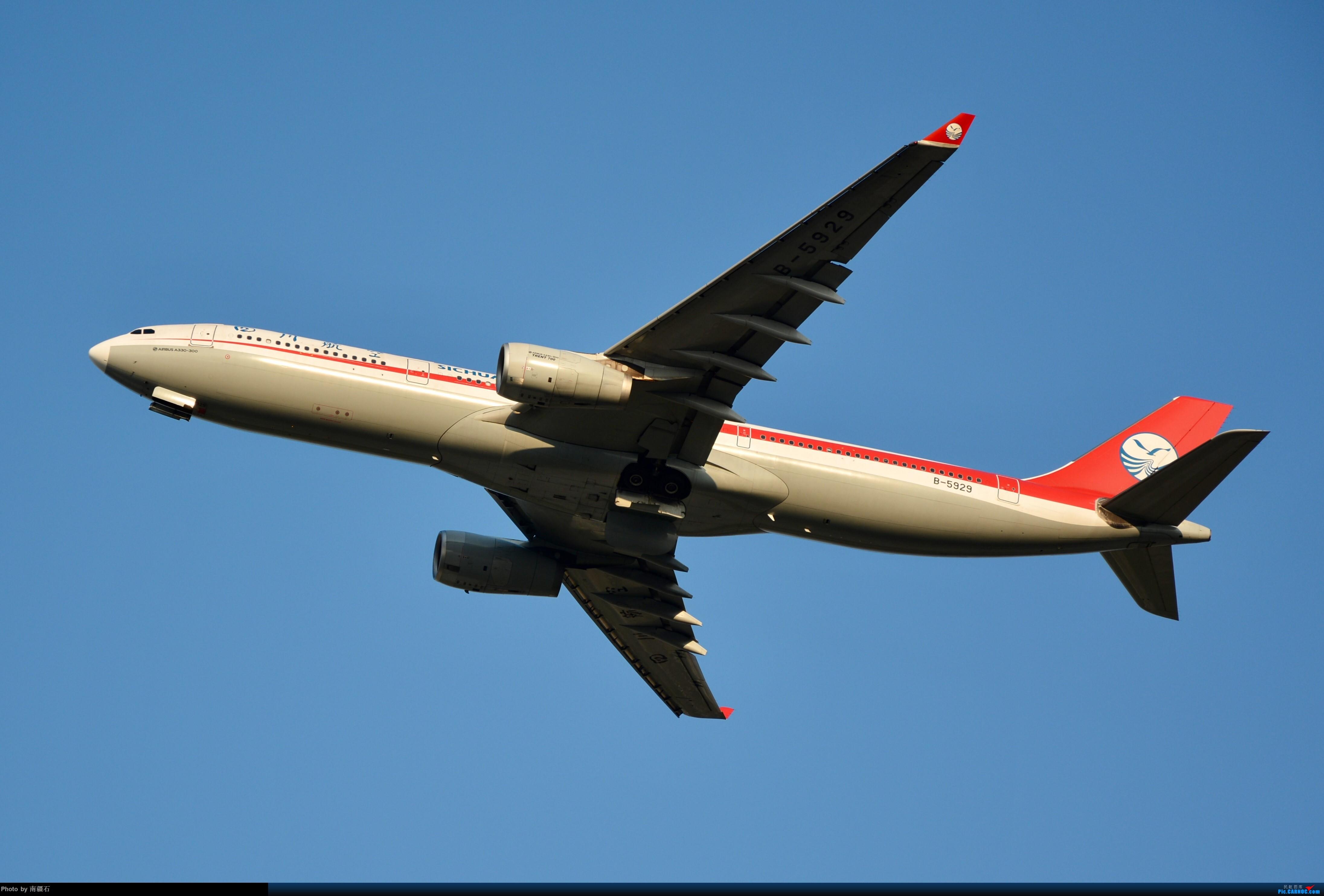 Re:[原创]CTU 川农的主场当然不能没有漂亮的川妹子 AIRBUS A330-300 B-5929 中国成都双流国际机场