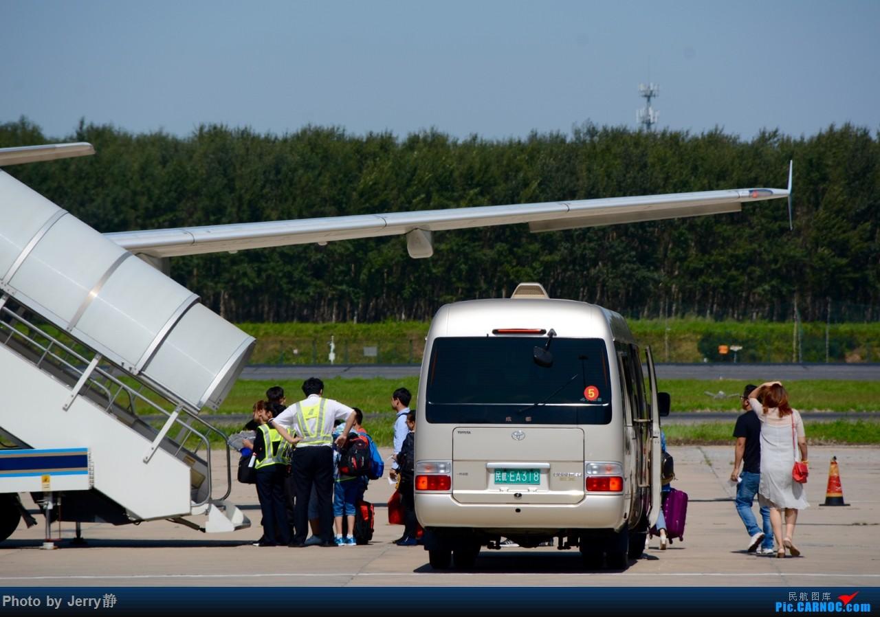 Re:[原创][SHE]八月底沈阳桃仙国际机场拍机,万里无云的天气 AIRBUS A321-200 B-8317  中国沈阳桃仙国际机场