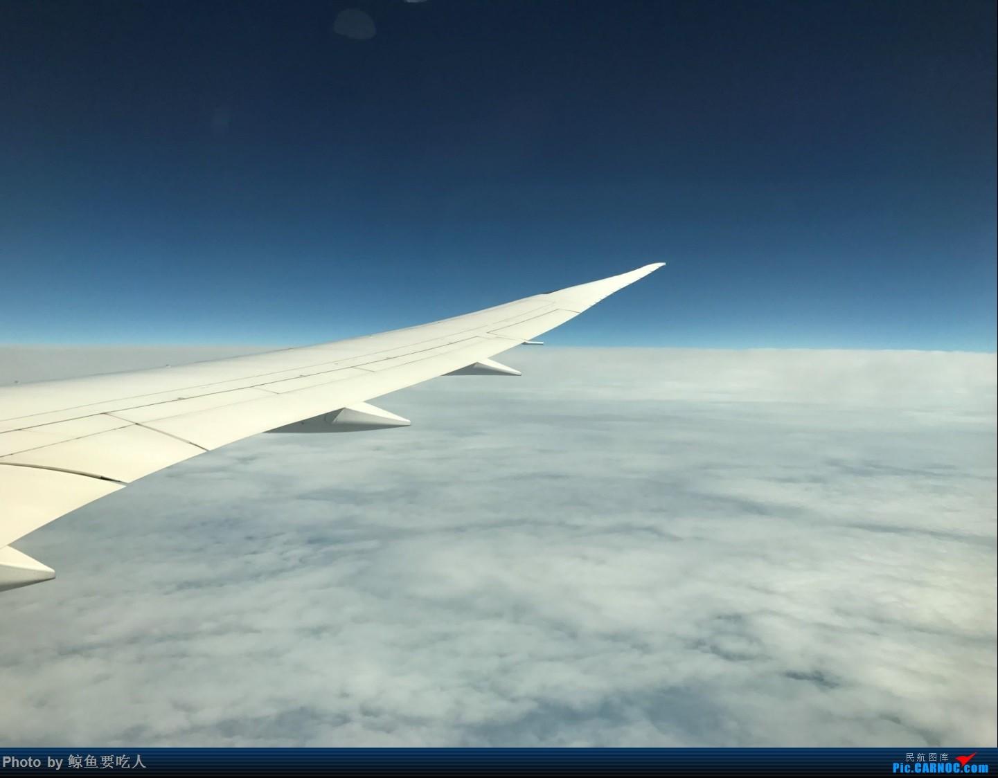 [原创]暑期加拿大西部 交换学习四周 AC026 上海PVG--温哥华YVR B789初体验 经济舱客机餐食、设备一览,外加浦东众多外航客机