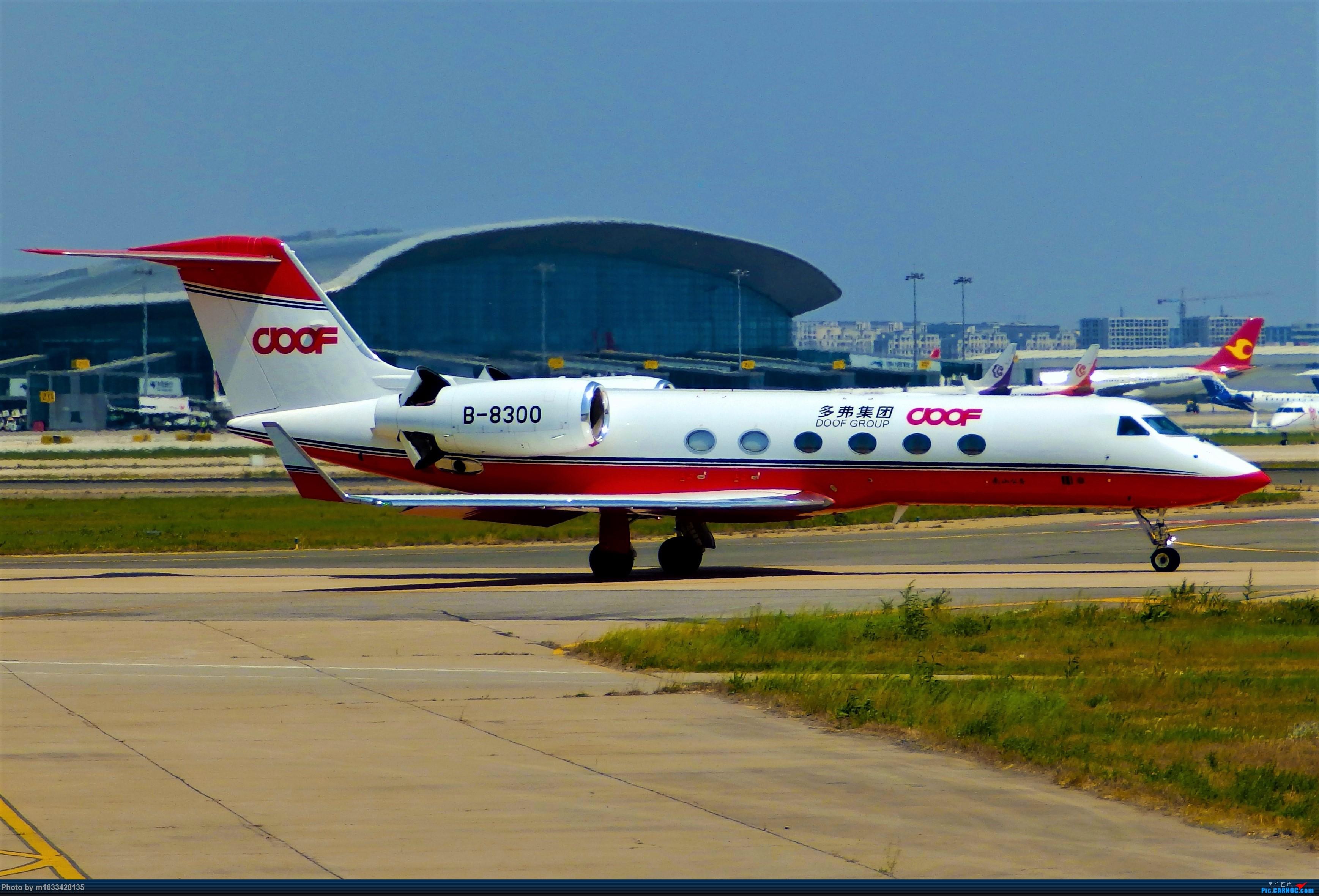 [原创][公务机]DOOF GROUP Gulfstream G450 GULFSTREAM G450 B-8300 中国天津滨海国际机场