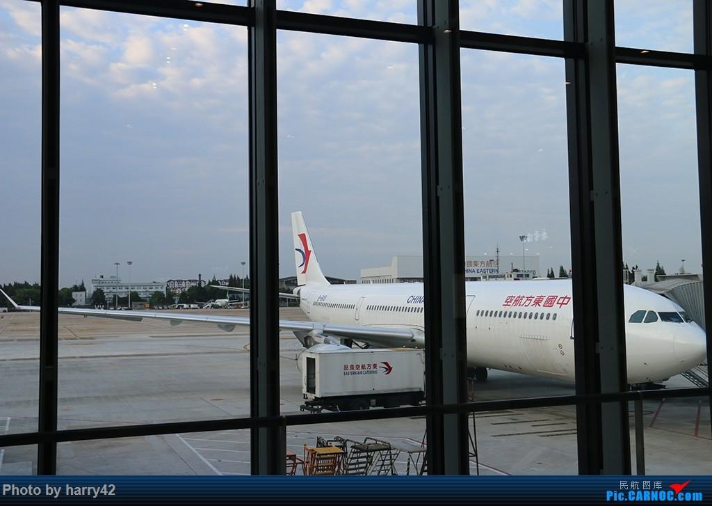 Re:[原创]【蜀黍游记No.4】又见面了,香港——抓住暑假的尾巴,寻找不一样的香港 AIRBUS A330-300 B-6119 中国上海虹桥国际机场