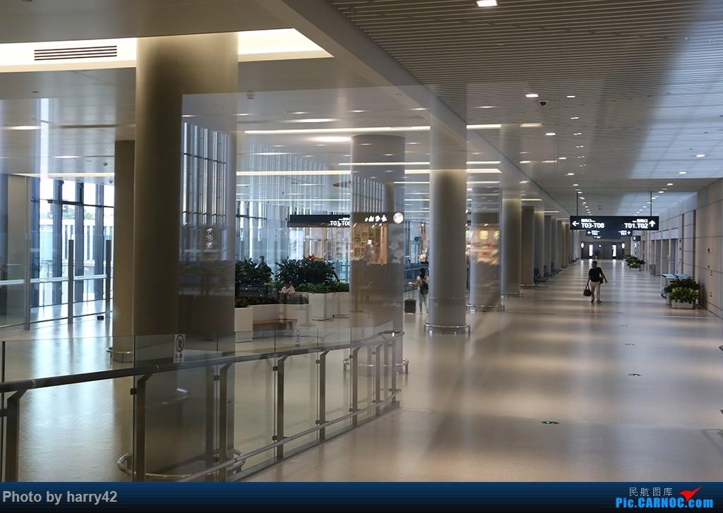 Re:[原创]【蜀黍游记No.4】又见面了,香港——抓住暑假的尾巴,寻找不一样的香港 AIRBUS A330-300 B-6530 中国上海虹桥国际机场 中国上海虹桥国际机场