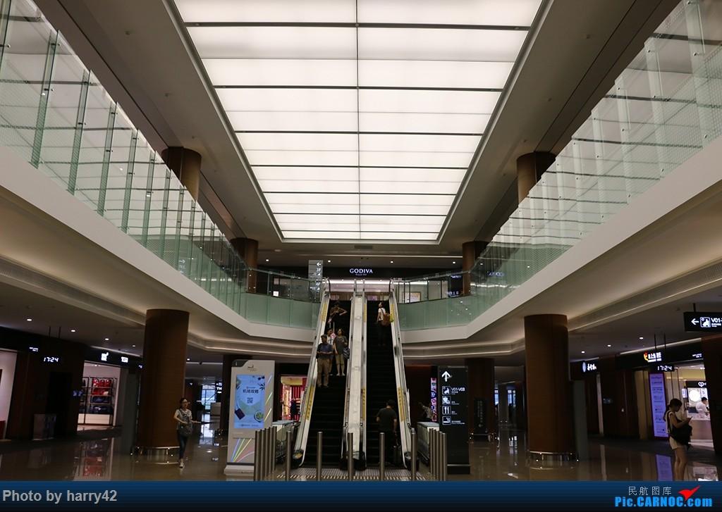 Re:【蜀黍游记No.4】又见面了,香港——抓住暑假的尾巴,寻找不一样的香港    中国上海虹桥国际机场
