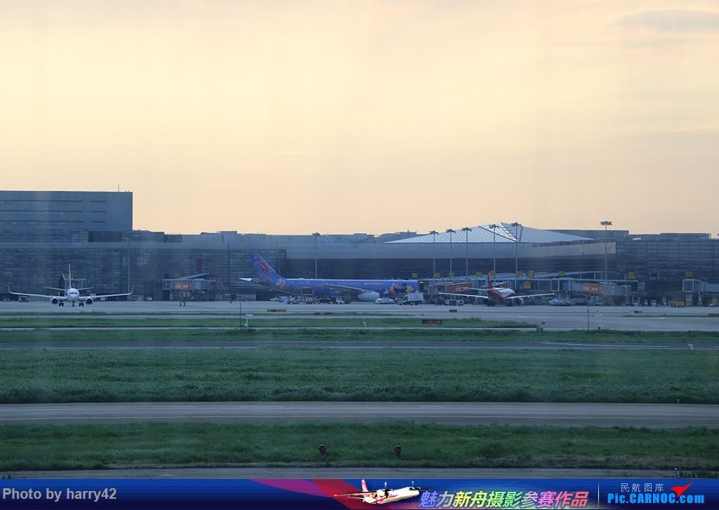 Re:[原创]【蜀黍游记No.4】又见面了,香港——抓住暑假的尾巴,寻找不一样的香港 AIRBUS A330-300 B-6120 中国上海虹桥国际机场