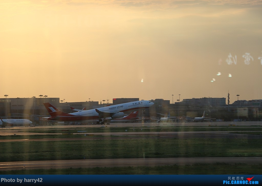 Re:[原创]【蜀黍游记No.4】又见面了,香港——抓住暑假的尾巴,寻找不一样的香港 AIRBUS A330-300 B-6096 中国上海虹桥国际机场