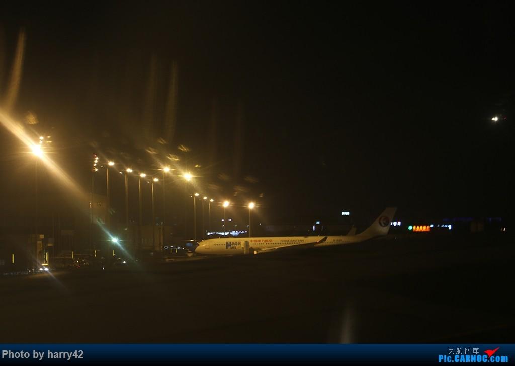 Re:[原创]【蜀黍游记No.4】又见面了,香港——抓住暑假的尾巴,寻找不一样的香港 AIRBUS A330-300 B-6125 中国上海虹桥国际机场