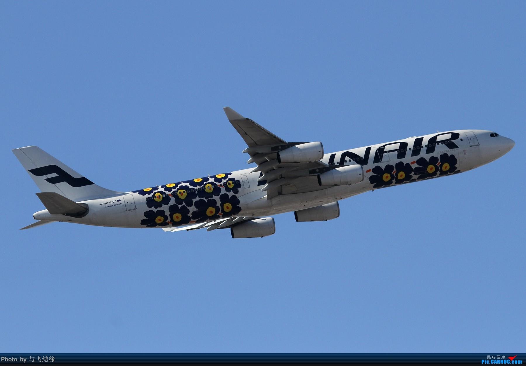 Re:[原创]现在的,过去的。在PEK的那些Airbus A340-300(航班)! AIRBUS A340-300 OH-LQD 中国北京首都国际机场