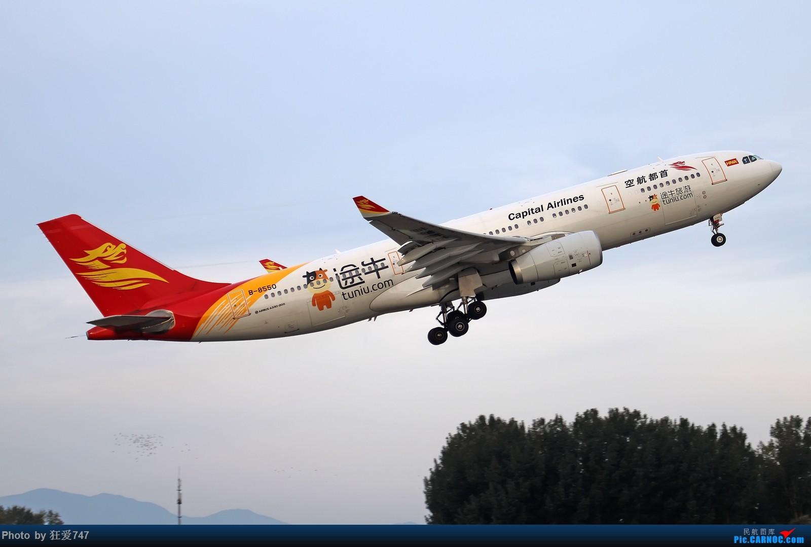 [原创]一张图:途牛旅游彩绘 AIRBUS A330-200 B-8550 中国北京首都国际机场