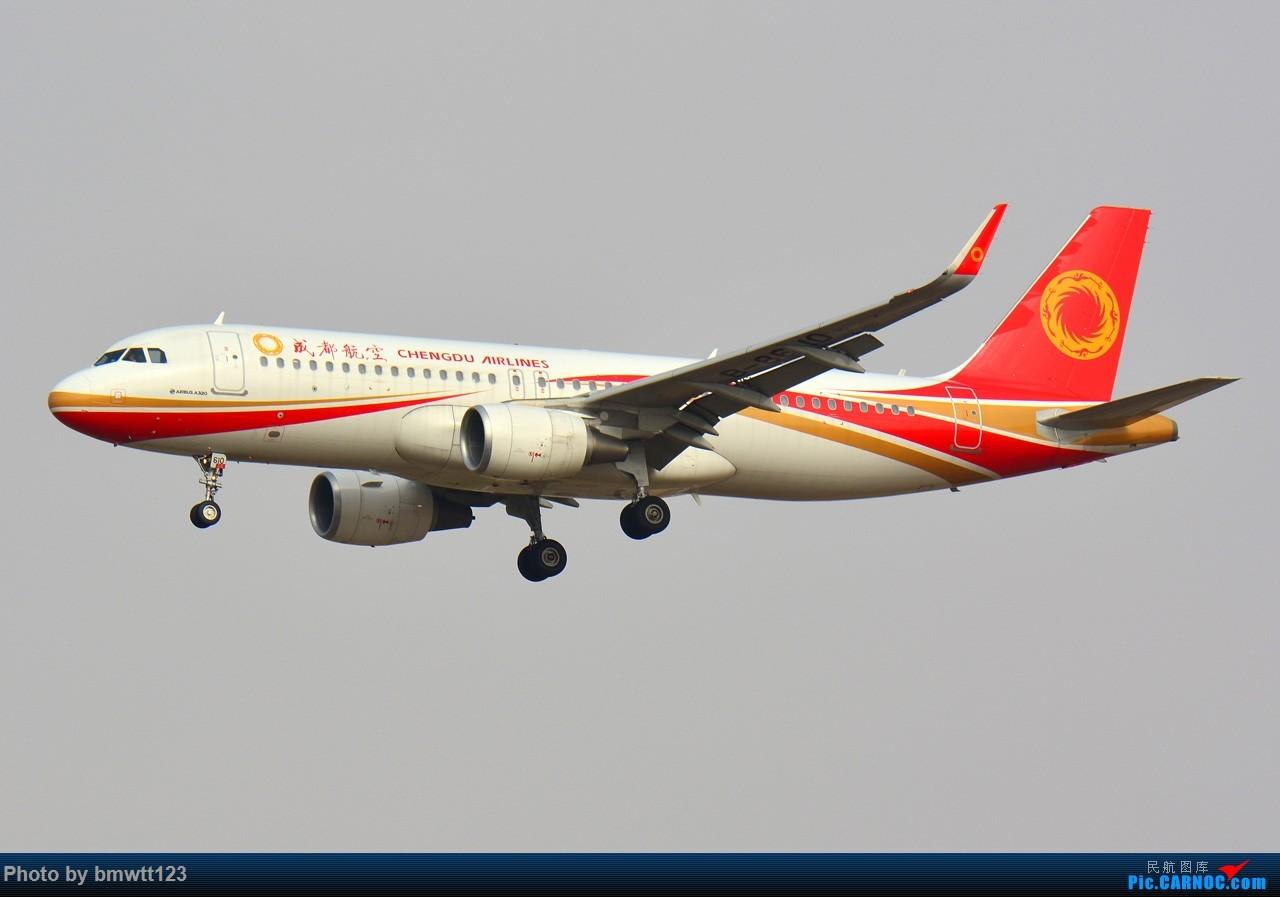 Re:[原创]【SHE沈阳】第40次桃仙拍机,苏霍伊100+青岛航+桂林航。。 AIRBUS A320-200 B-8610 中国沈阳桃仙国际机场