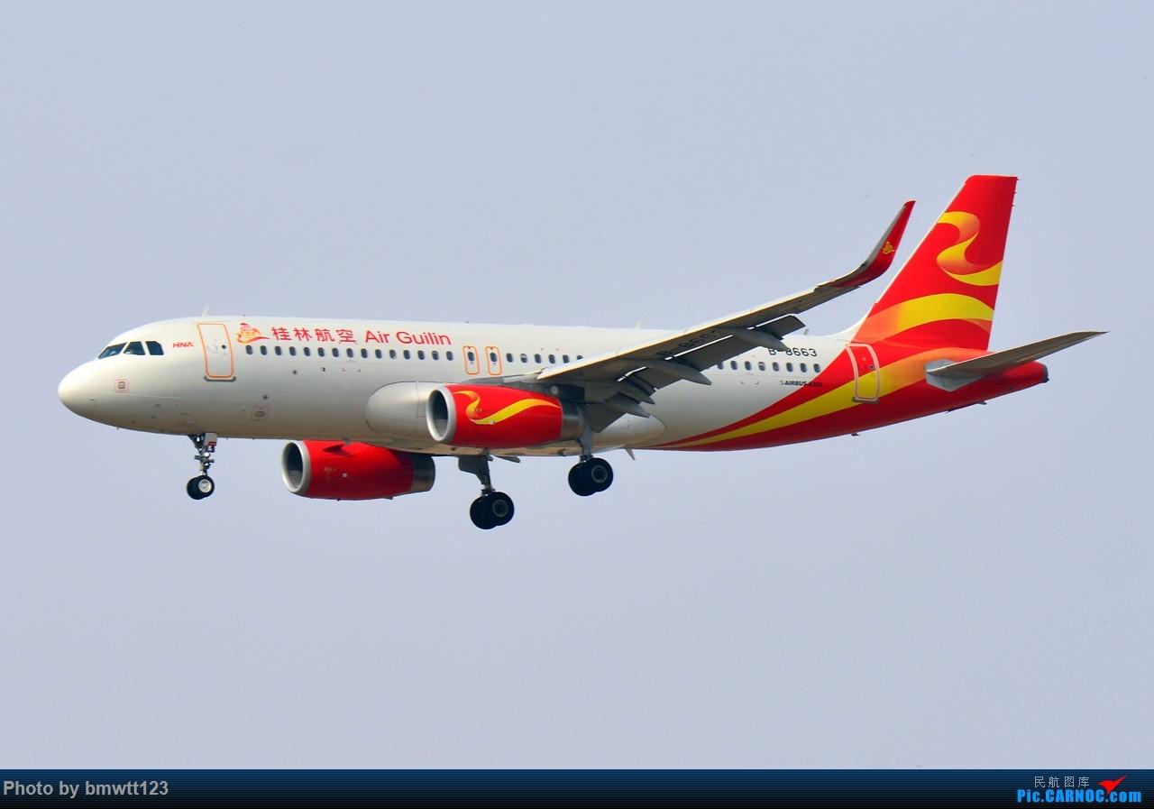 Re:[原创]【SHE沈阳】第40次桃仙拍机,苏霍伊100+青岛航+桂林航。。 AIRBUS A320-200 B-8663 中国沈阳桃仙国际机场