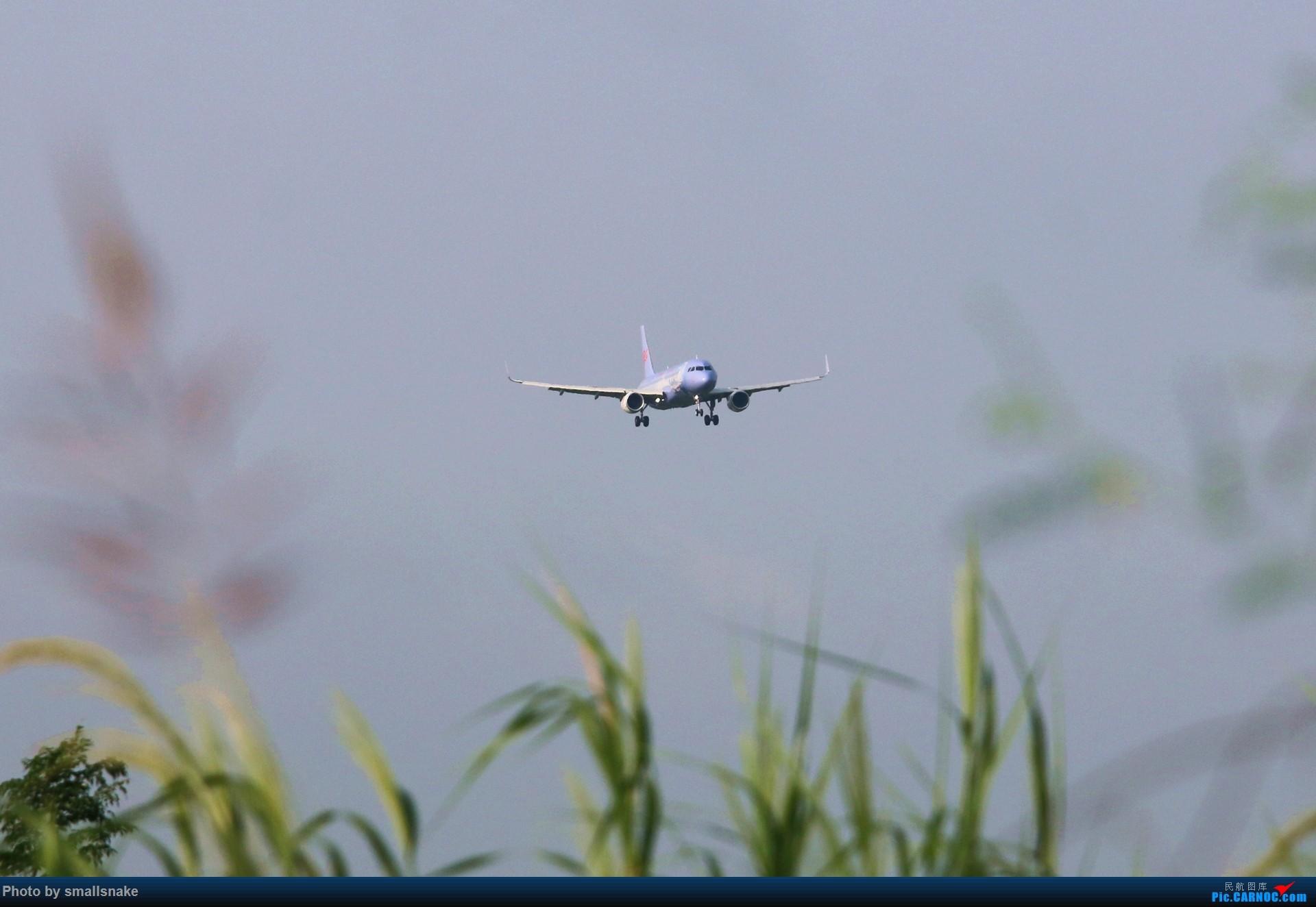 [原创]长龙航空诗画浙江彩绘首降NNG... AIRBUS A320-200 B-8593 南宁吴圩国际机场