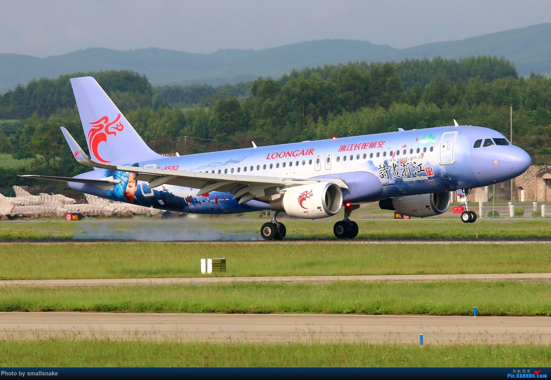 Re:长龙航空诗画浙江彩绘首降NNG... AIRBUS A320-200 B-8593 南宁吴圩国际机场
