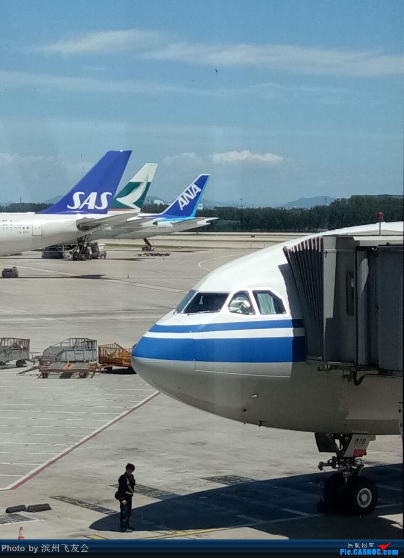 Re:[原创]逐梦之行―白令海峡上看日出,第一次乘坐空客的A330-300客机,第三次北美之行,深度探索中国飞加拿大航线上的服务[中国国际航空公司执飞] AIRBUS A330-300 B-5978 中国北京首都国际机场