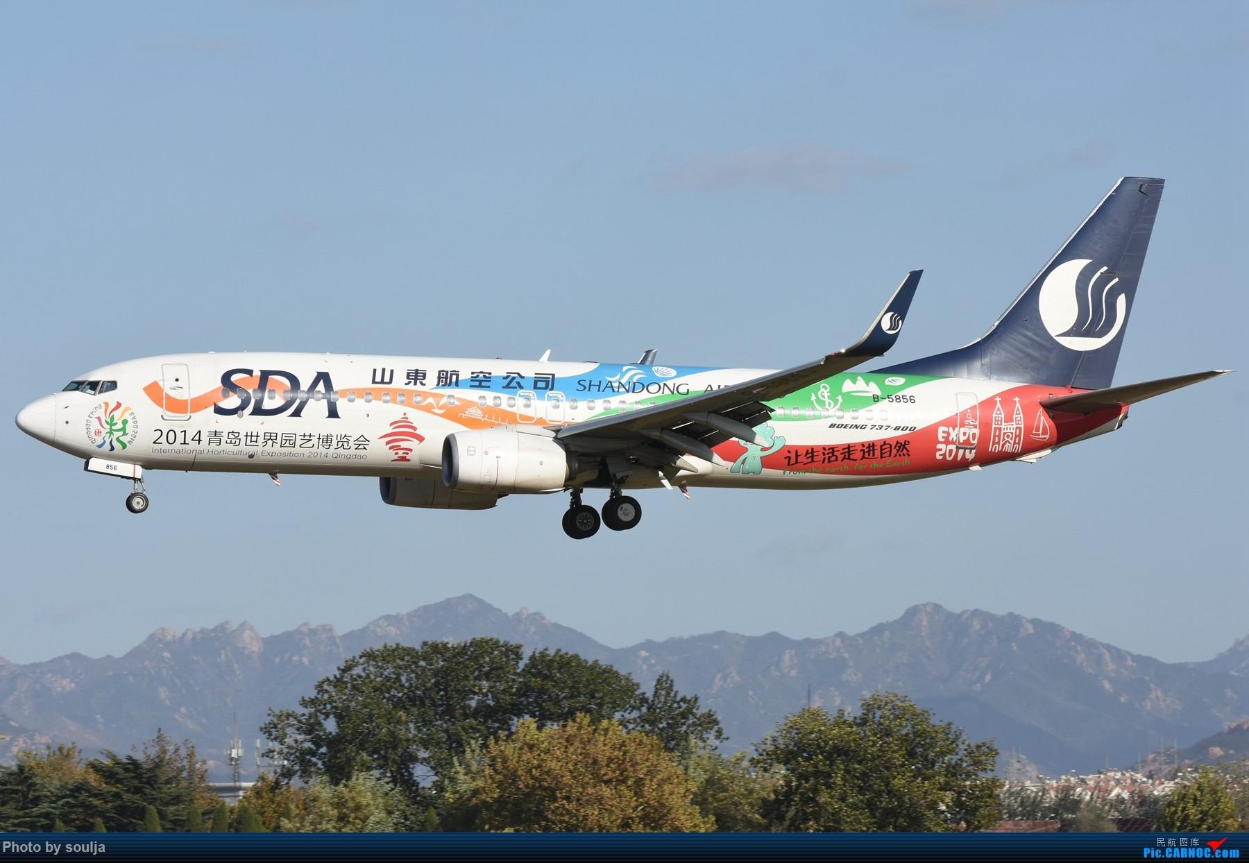 Re:[原创]TAO蹲35,见证首航用途牛首航悉尼 BOEING 737-800 B-5856 中国青岛流亭国际机场