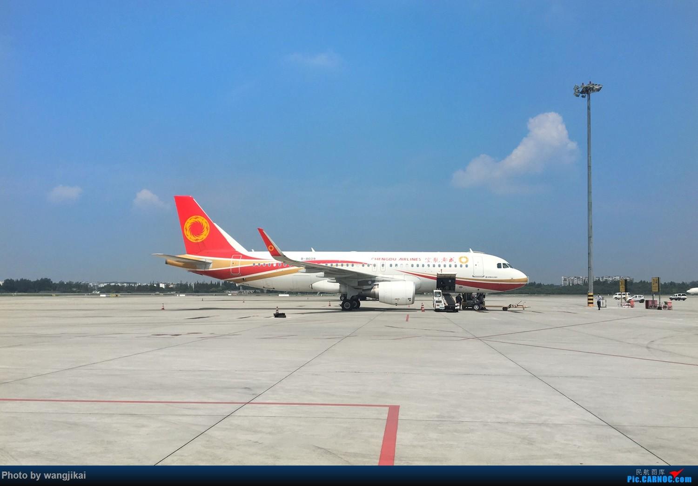 Re:[原创]【杭州飞友会】Paulの游记 11 | 青藏随行,这里是西藏,此处航班易取消(下篇) AIRBUS A320-200 B-8609 中国成都双流国际机场