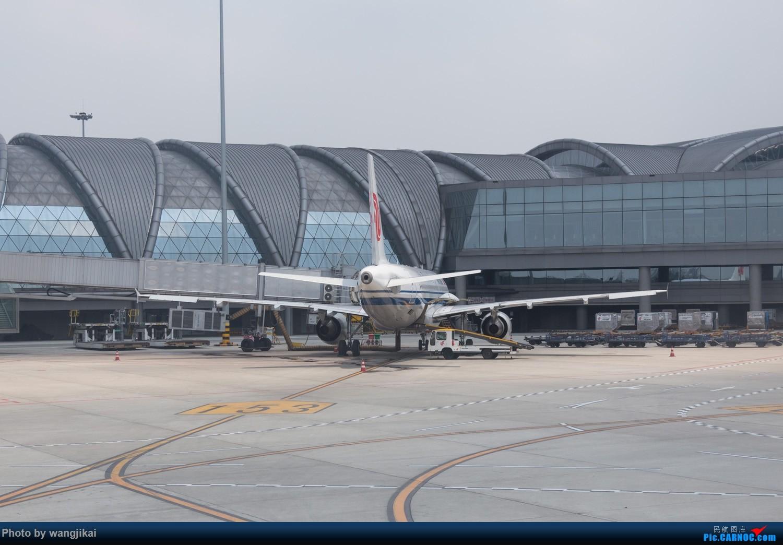Re:[原创]【杭州飞友会】Paulの游记 11 | 青藏随行,这里是西藏,此处航班易取消(下篇) BOEING 737-800 B-7818 中国成都双流国际机场 中国成都双流国际机场