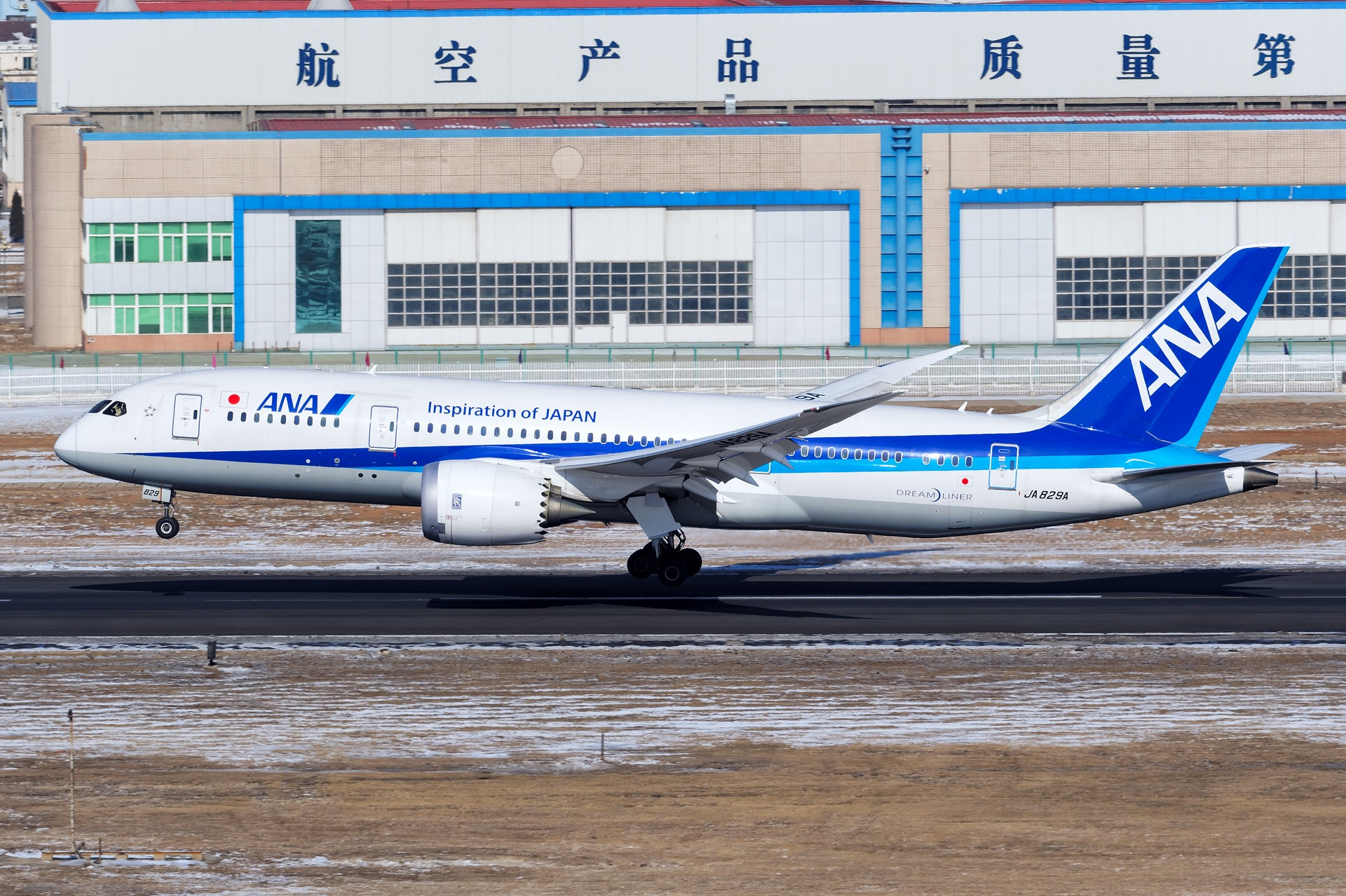 Re:[原创]★[DLC]一点有趣的事情(国庆加点儿料)★ BOEING 787-8 JA829A 中国大连国际机场