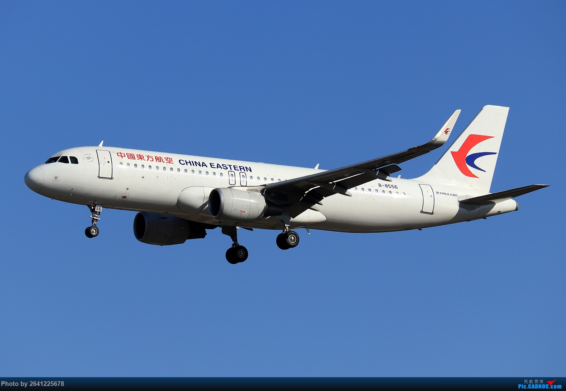 Re:[原创]【ZBAA】随意 AIRBUS A320-200 B-8556 中国北京首都国际机场