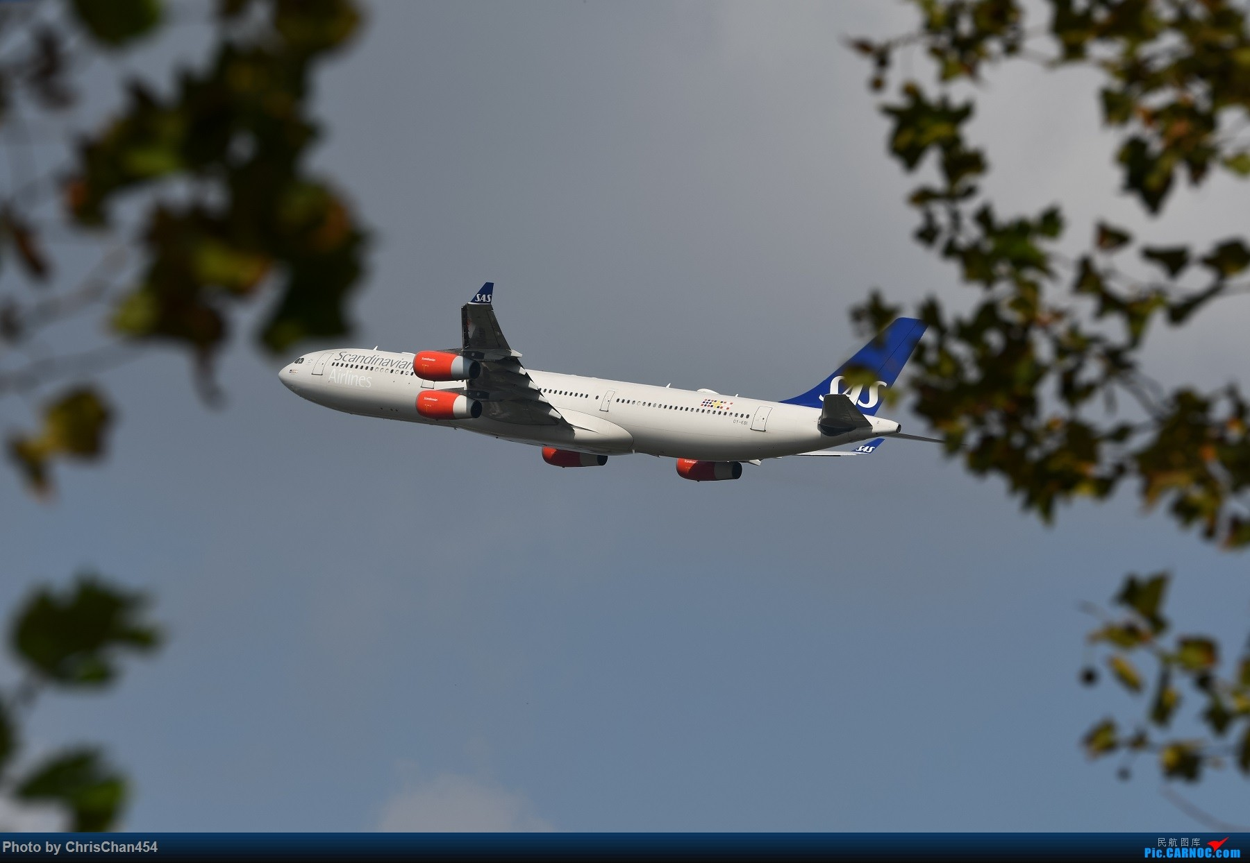Re:[原创]PVG重型机一组,5APU & 卡狗 AIRBUS A340-300 OY-KBI 中国上海浦东国际机场