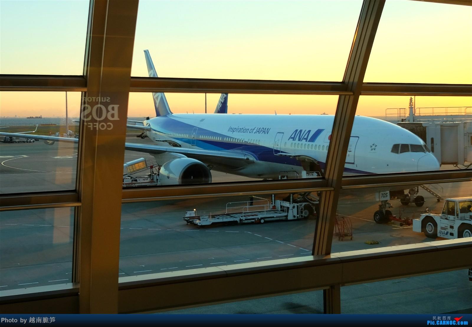 Re:红叶季感受北海道初冬之美,全日空超长游记(今日开催!) BOEING 767-300