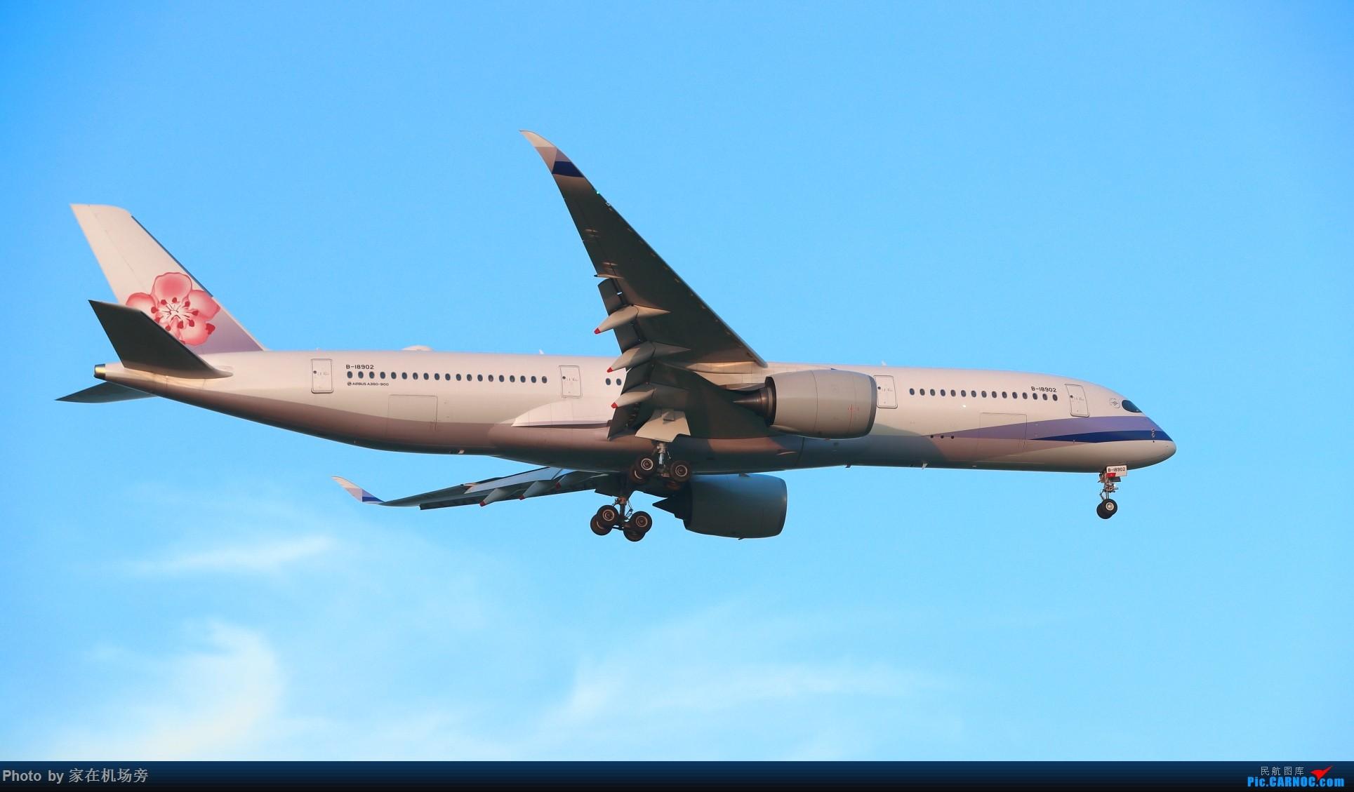 [原创]夏天傍晚的PVG华航350 A350