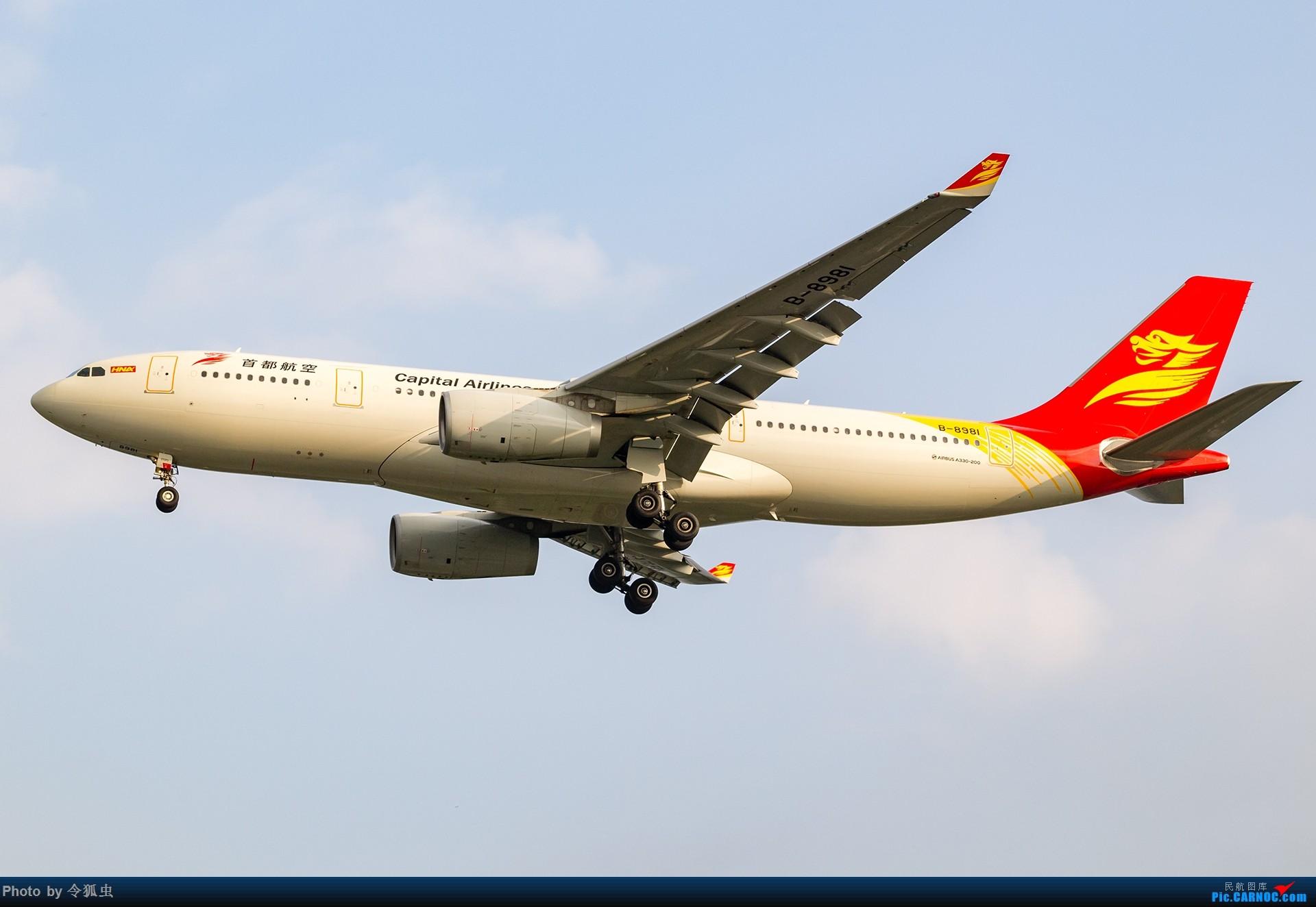 【CTU】首都航空B-8981_A332斜阳降落 AIRBUS A330-200 B-8981 中国成都双流国际机场
