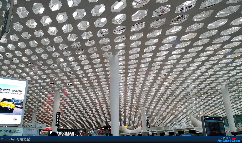 Re:[原创]飞翔之猫游记(你好深圳)    中国深圳宝安国际机场