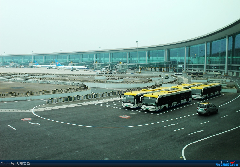 Re:[原创]飞翔之猫游记(喜欢阳光,喜欢海滩,喜欢海南)    中国重庆江北国际机场