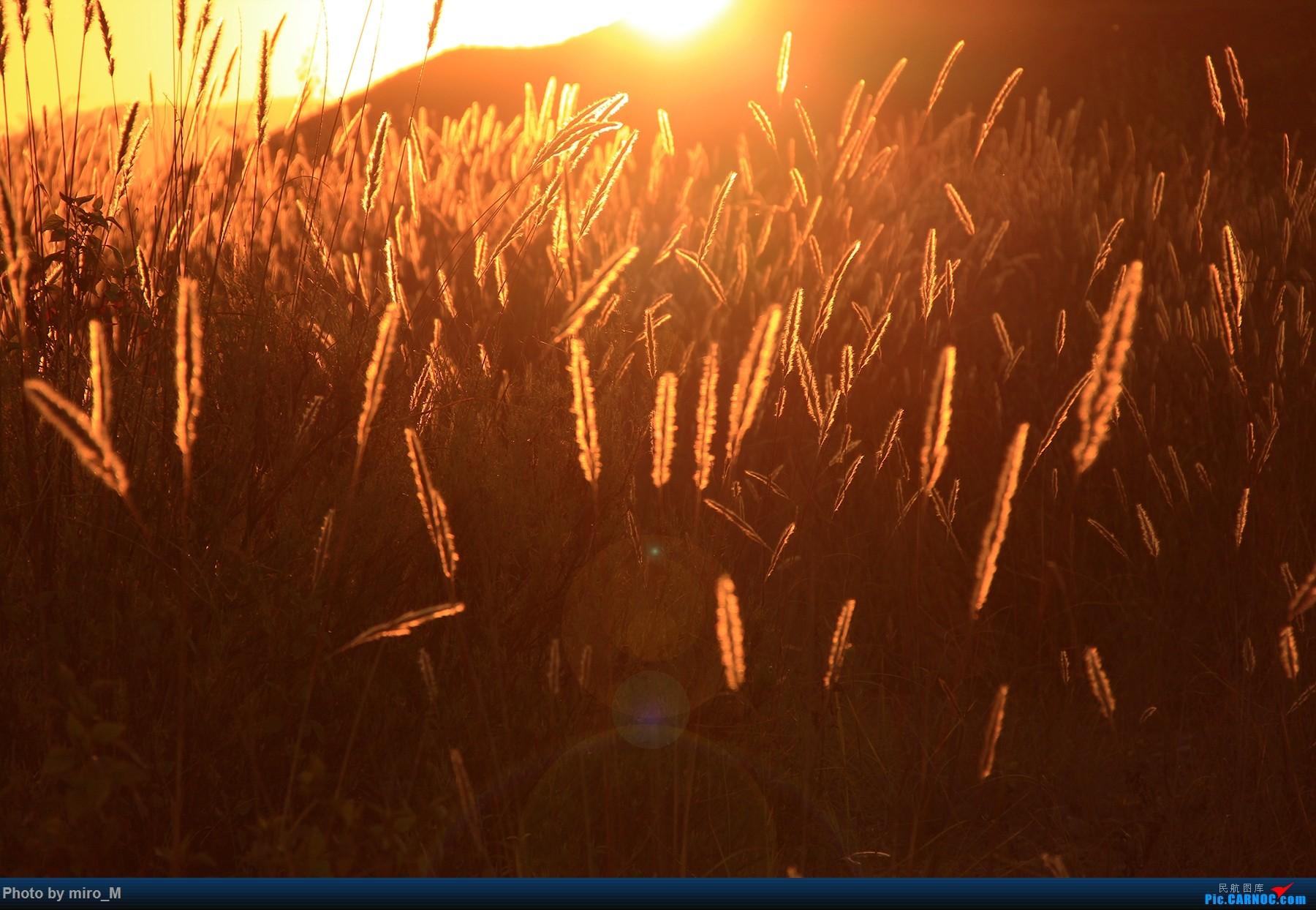Re:阳光和煦的下午,带老爸一起登上昆明西跑边的大土坡
