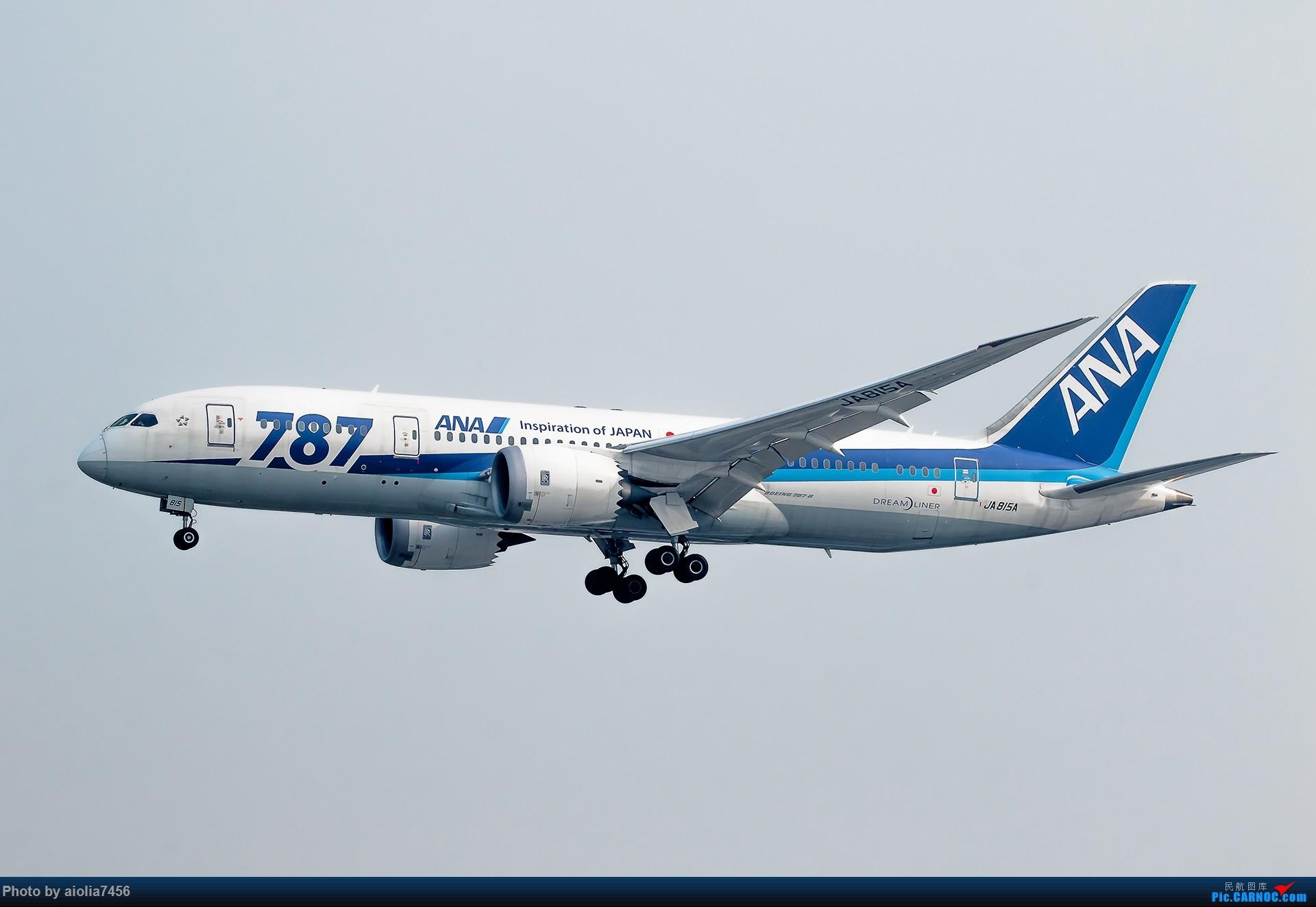Re:[霸都打机队]摸摸怀中的7D2,好宝宝,跟了新的主人你要乖乖听话哦,离开我之前,我带你逛一圈ZSSS,最后一次陪我看看那些我们不怎么看得到的宽体吧。 BOEING 787-8 JA815A 中国上海虹桥国际机场