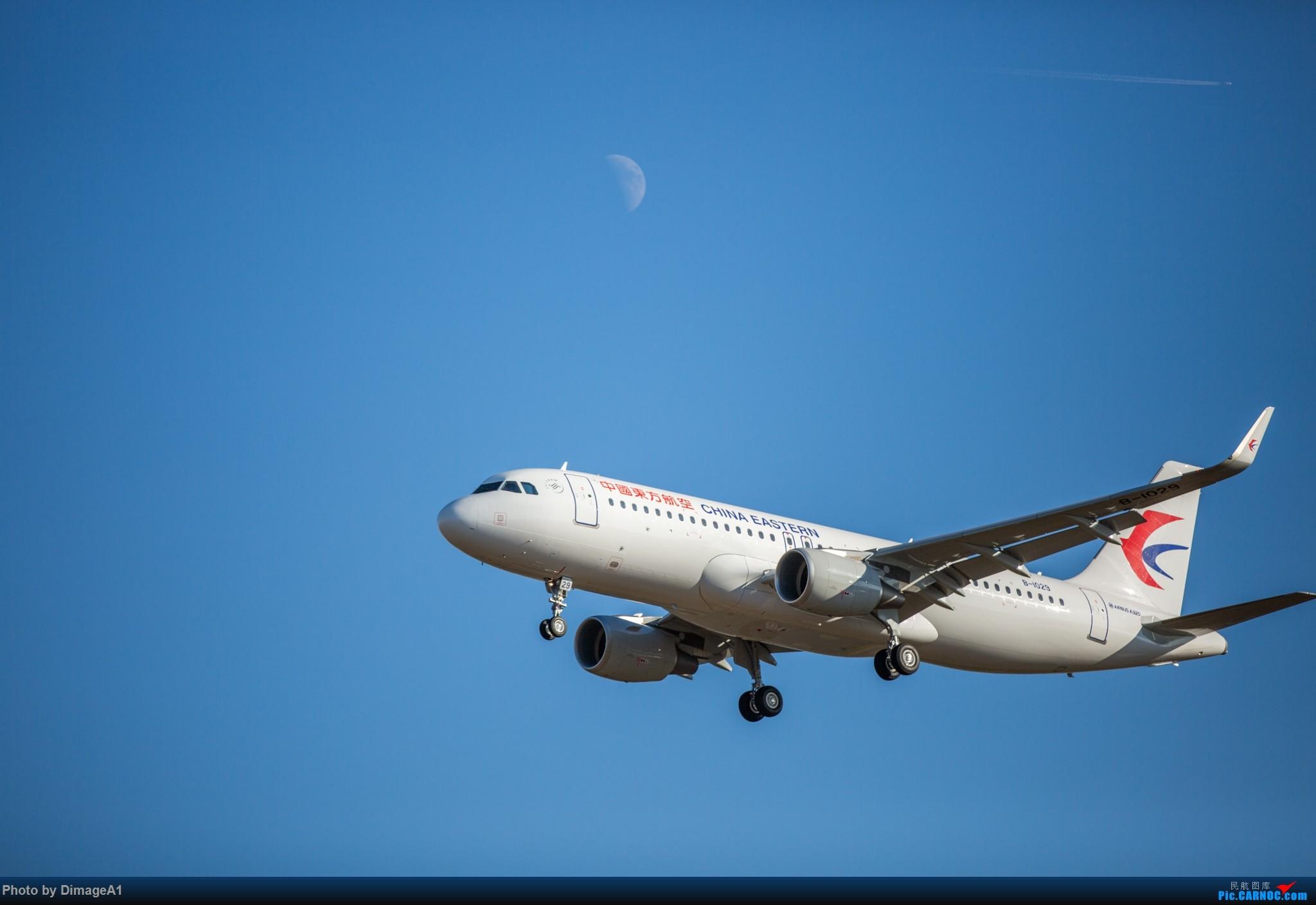 [原创]11月26日首都机场的飞机 AIRBUS A320-200 B-1029 首都机场