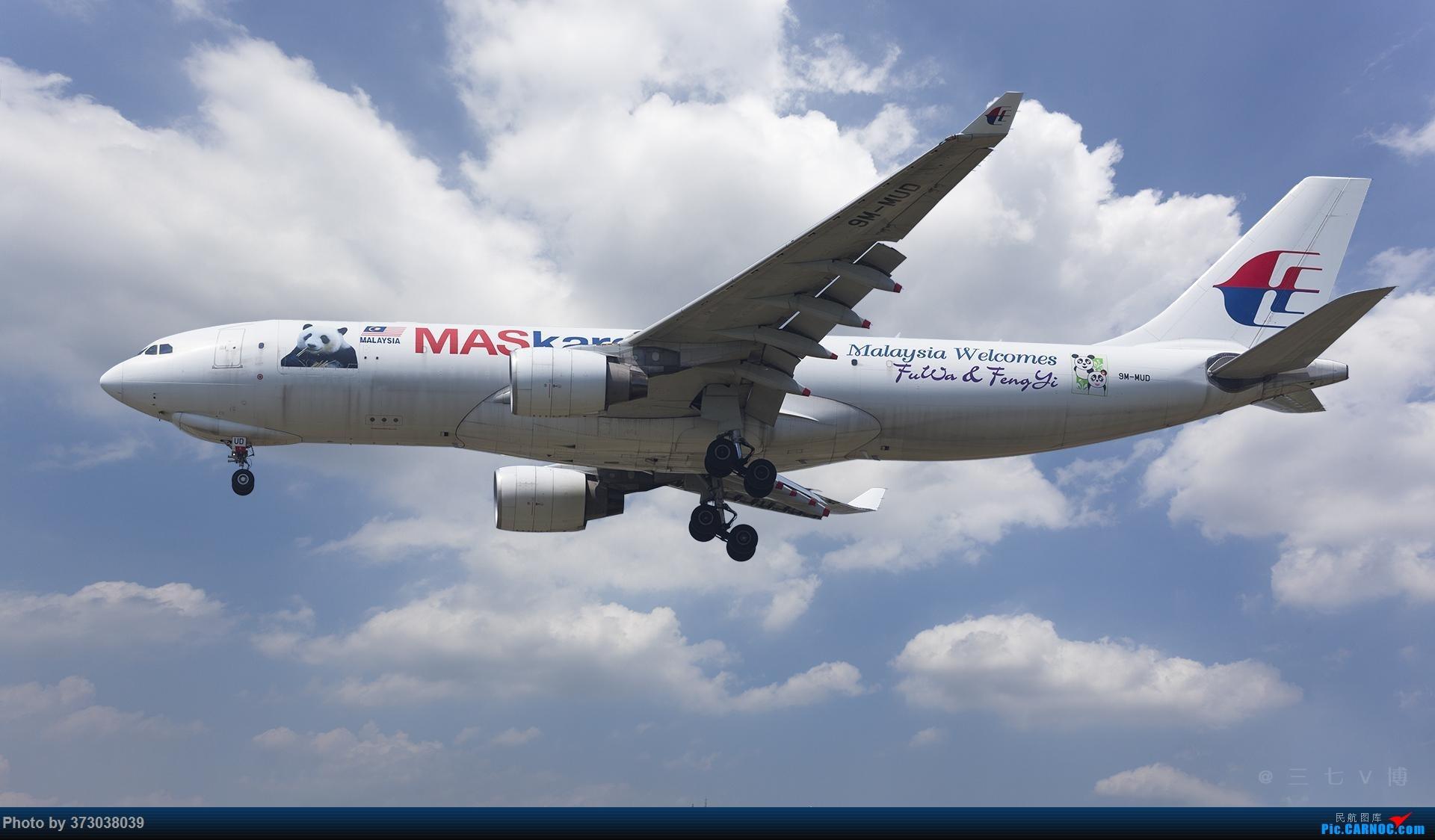 """马航熊猫机 9M-MUD Airbus A330-223F """"凤仪""""和""""福娃"""" AIRBUS A330-200 9M-MUD 中国上海浦东国际机场"""