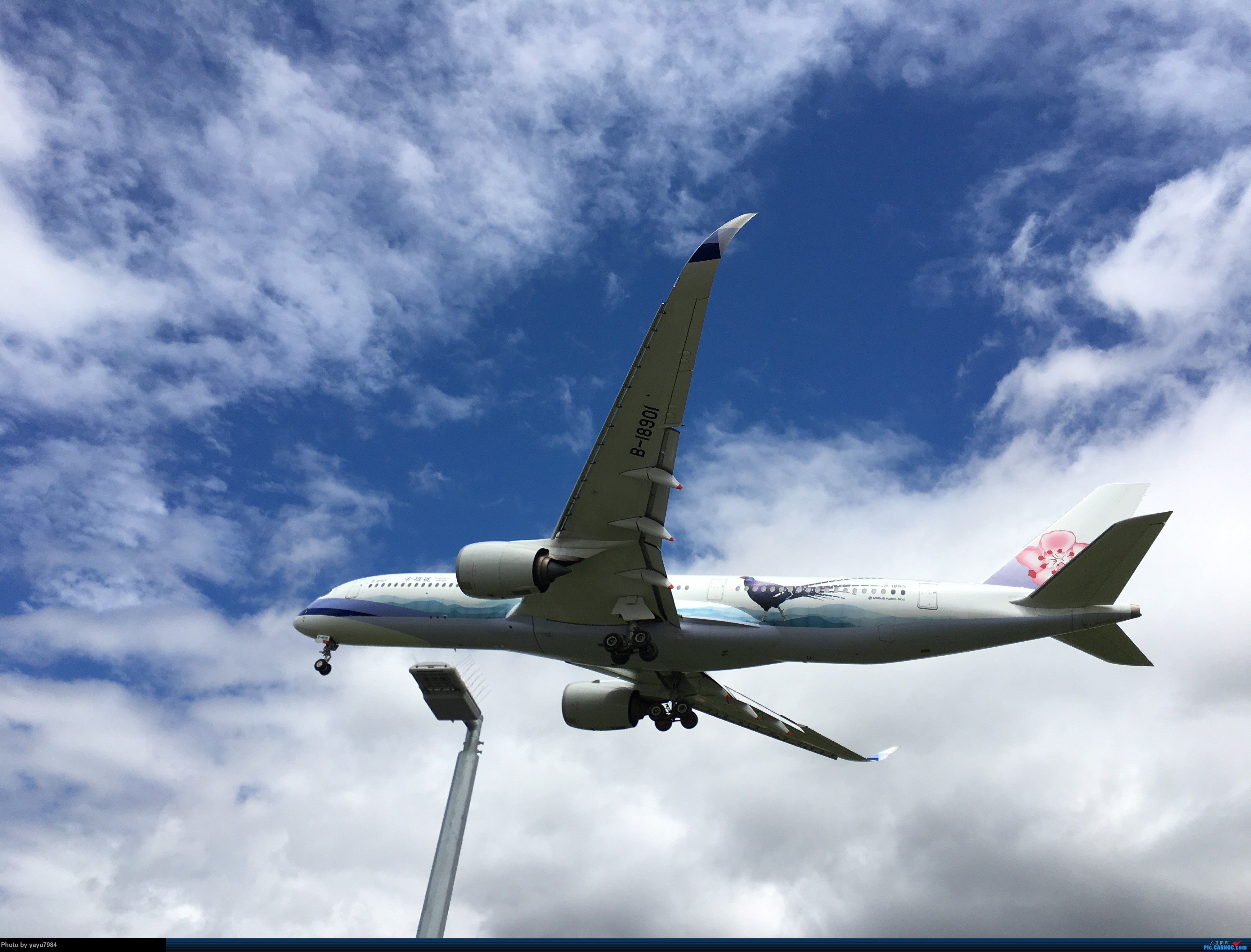 Re:[原创][SYD] 华航A350帝雉号首航悉尼 + 村里的其他常客 AIRBUS A350-900 B-18901 澳大利亚悉尼金斯福德·史密斯机场