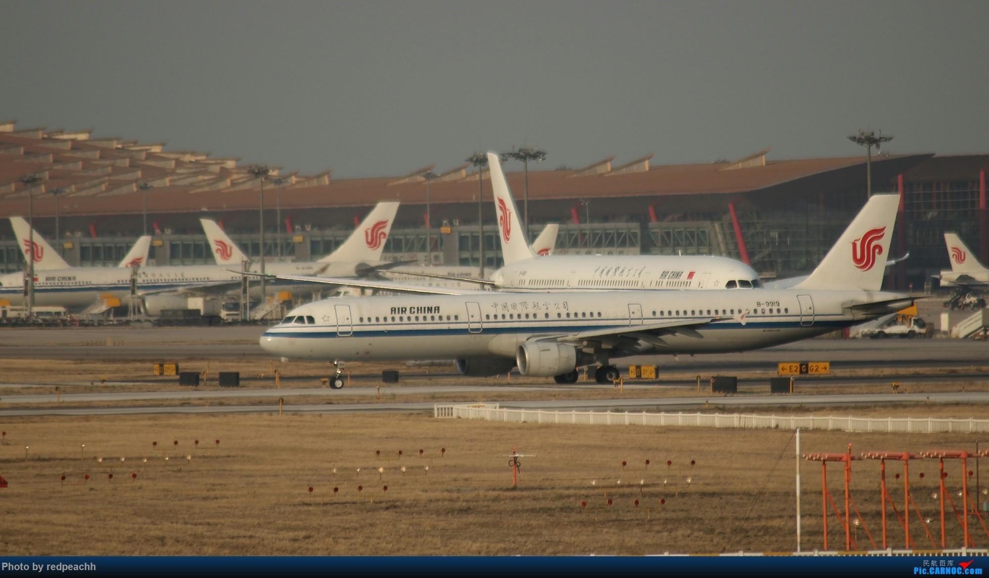 Re:渣机渣镜头之人生首次八卦台拍机(都是常规货) AIRBUS A321-200 B-9919 中国北京首都国际机场