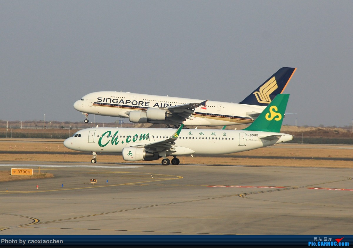 Re:[原创][PVG]零度拍机~迎来送往,晨昏无间! AIRBUS A320-200 B-8580 中国上海浦东国际机场
