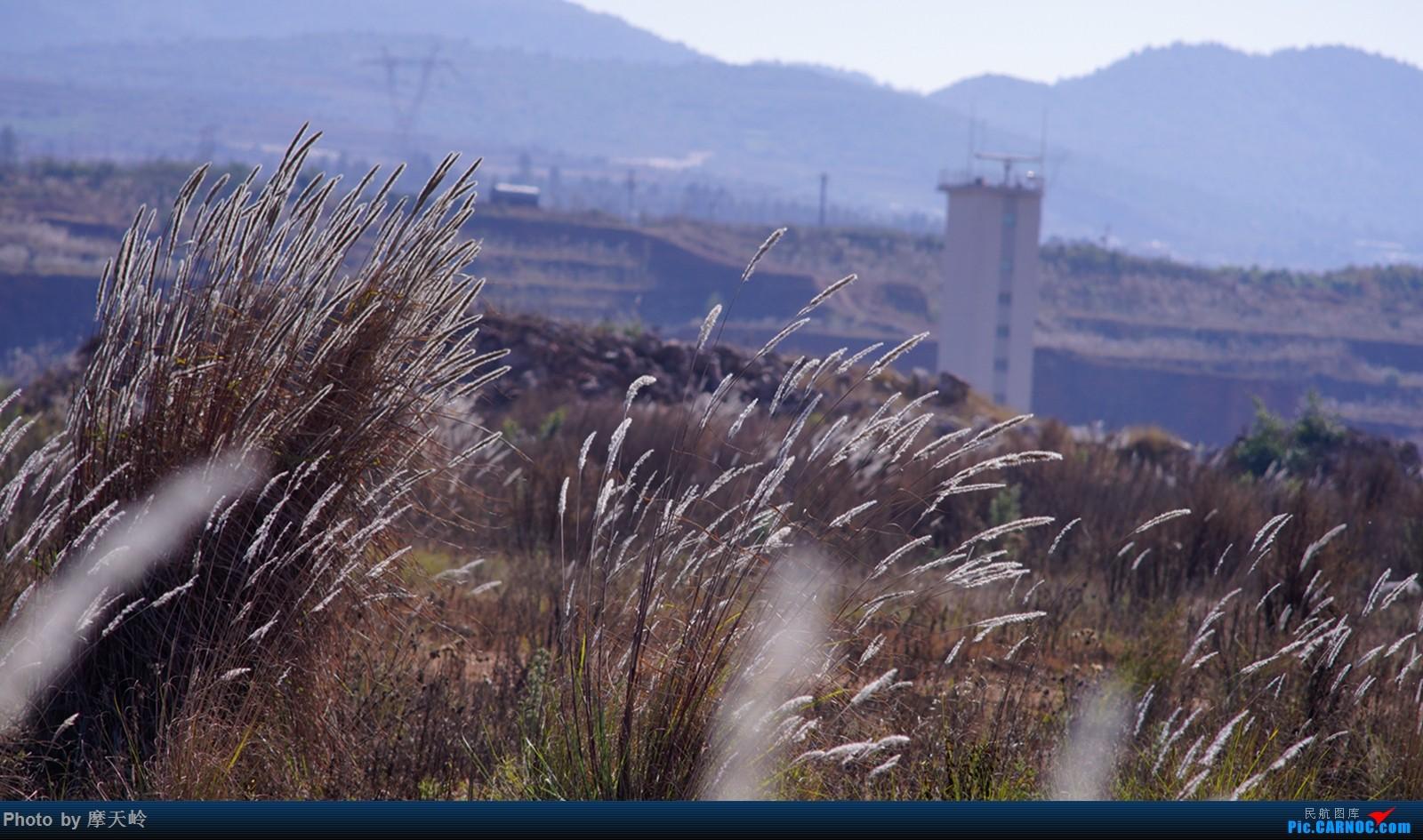 Re:[原创]长水尽是小家伙    中国昆明长水国际机场