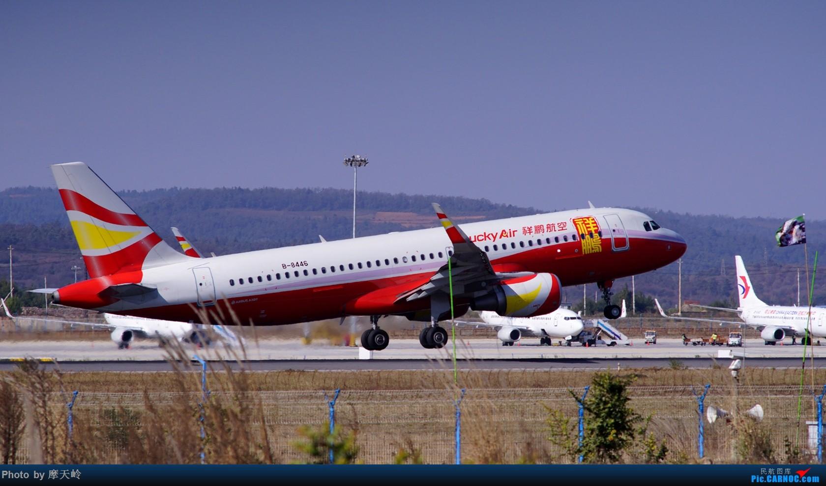 Re:[原创]长水尽是小家伙 AIRBUS A320-200 B-8446 中国昆明长水国际机场