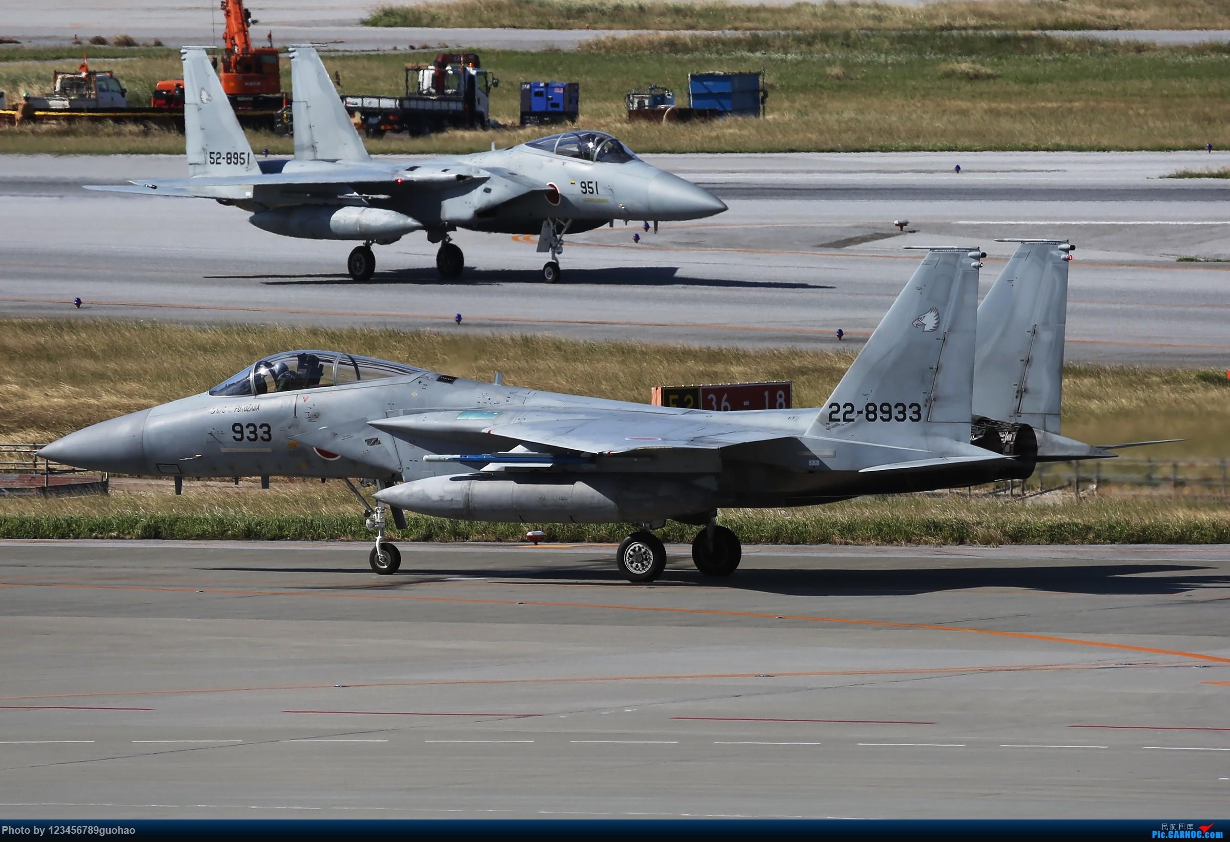 冒个泡儿 MCDONNELL DOUGLAS (MITSUBISHI) F-15J EAGLE 22-8933 日本那霸机场
