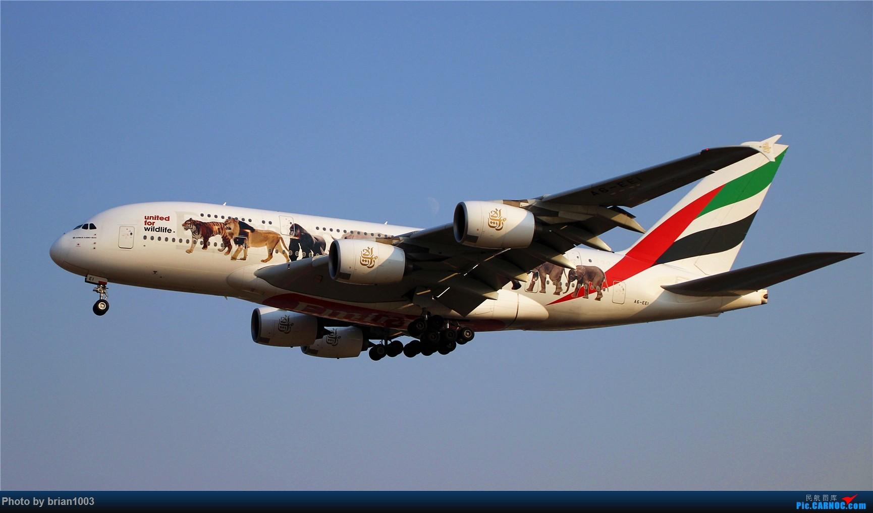 Re:[原创]PEK八卦台拍机 AIRBUS A380-800 A6-EEI 首都机场