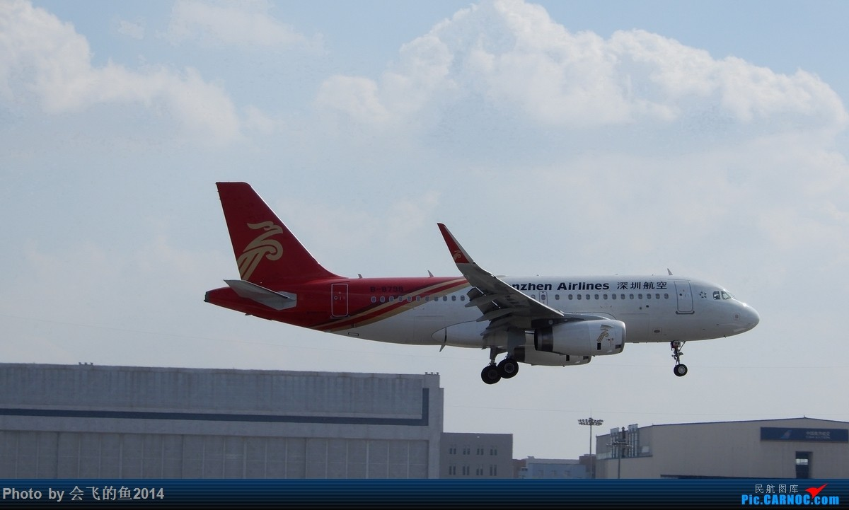 Re:[原创]207年12月桃仙机场拍机 319