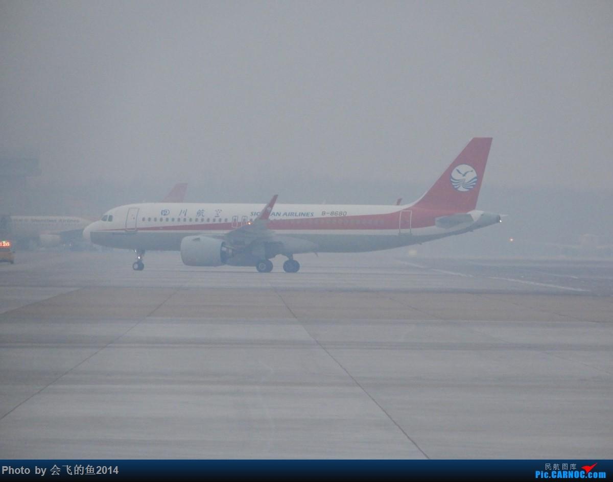 Re:[原创]207年12月桃仙机场拍机 320NEO