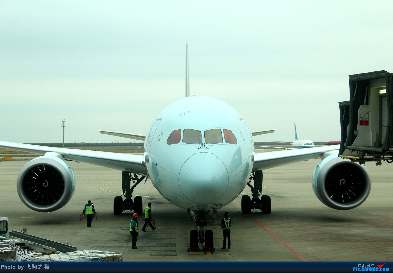 Re:飞翔之猫魔都见闻 BOEING 787-9  浦东国际机场