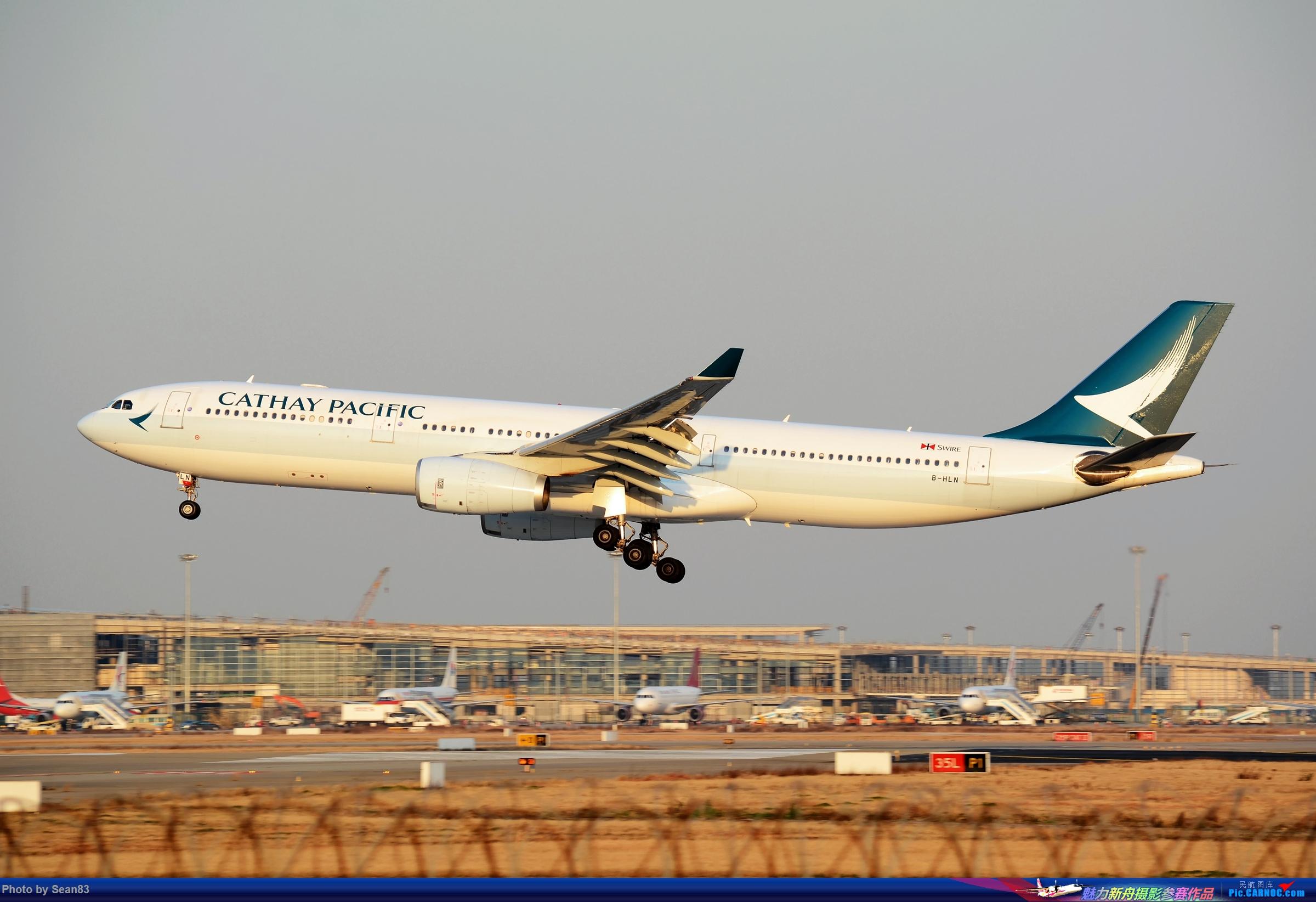 (PVG)鱼翅不红烧 AIRBUS A330-300 B-HLN 上海浦东国际机场