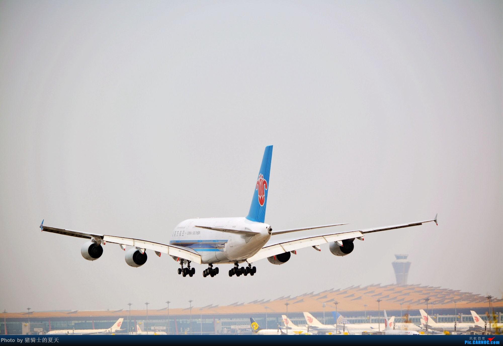 Re:[原创]2017年鸡鸭图 AIRBUS A380 B-6138