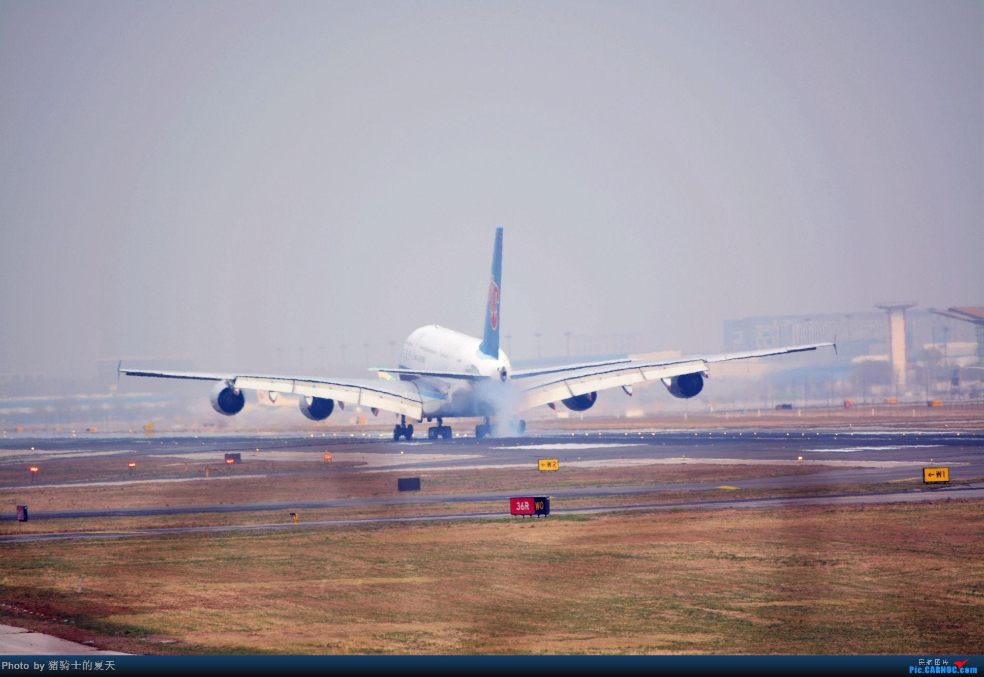 Re:[原创]2017年鸡鸭图 AIRBUS A380 B-6138 中国北京首都国际机场