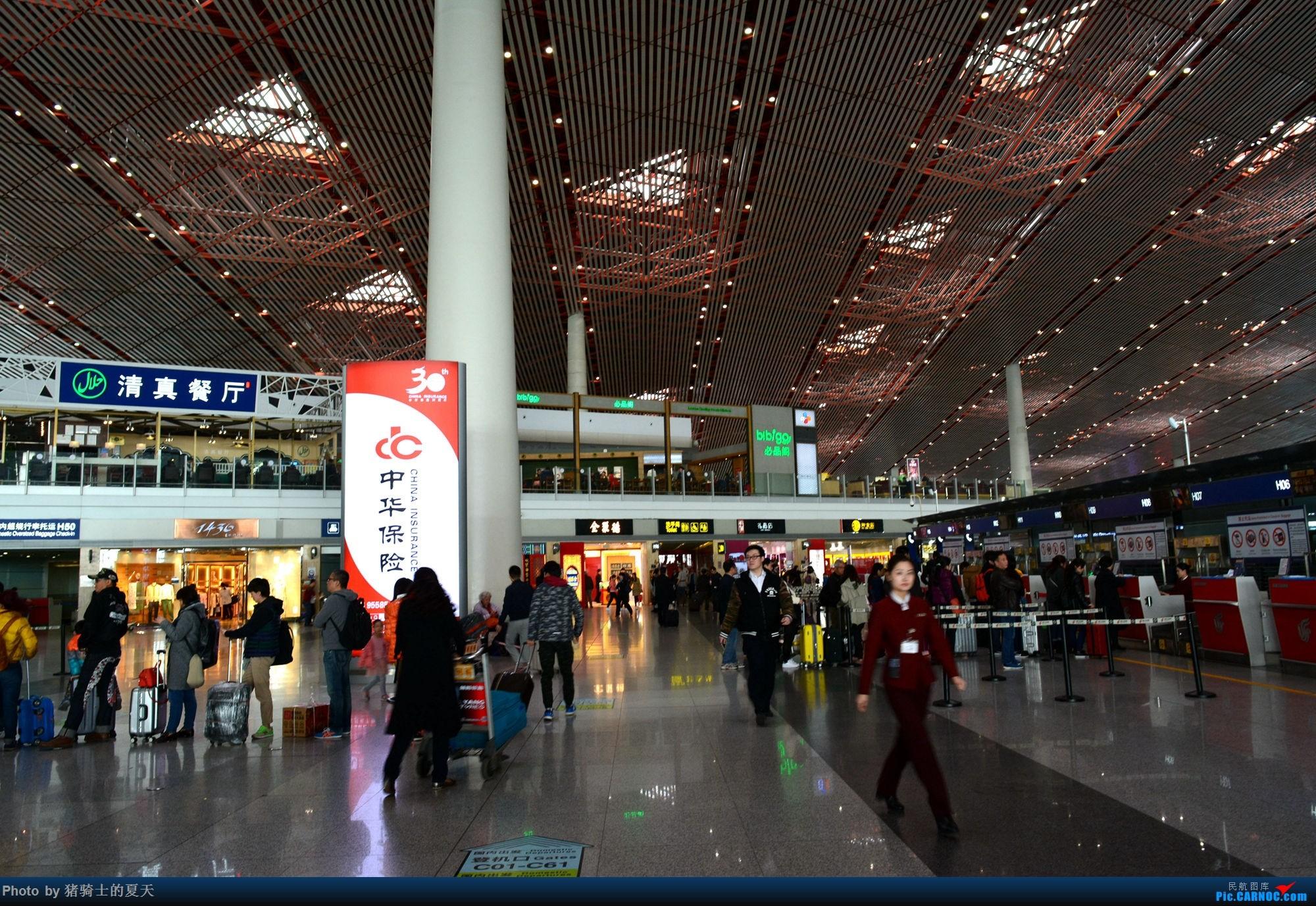 Re:[原创]2017年鸡鸭图    中国北京首都国际机场