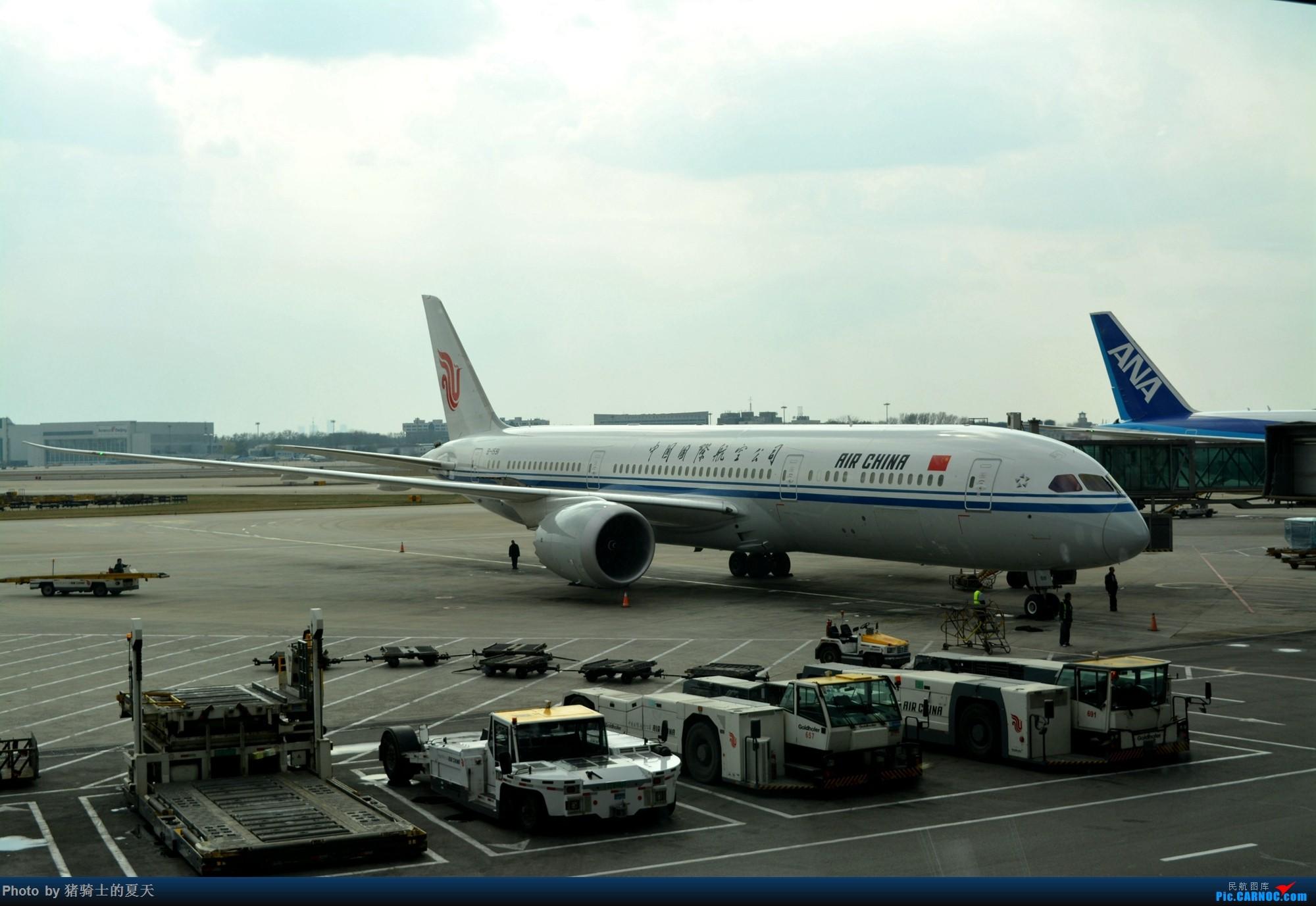 Re:2017年鸡鸭图 BOEING 787-9 B-1591 中国北京首都国际机场