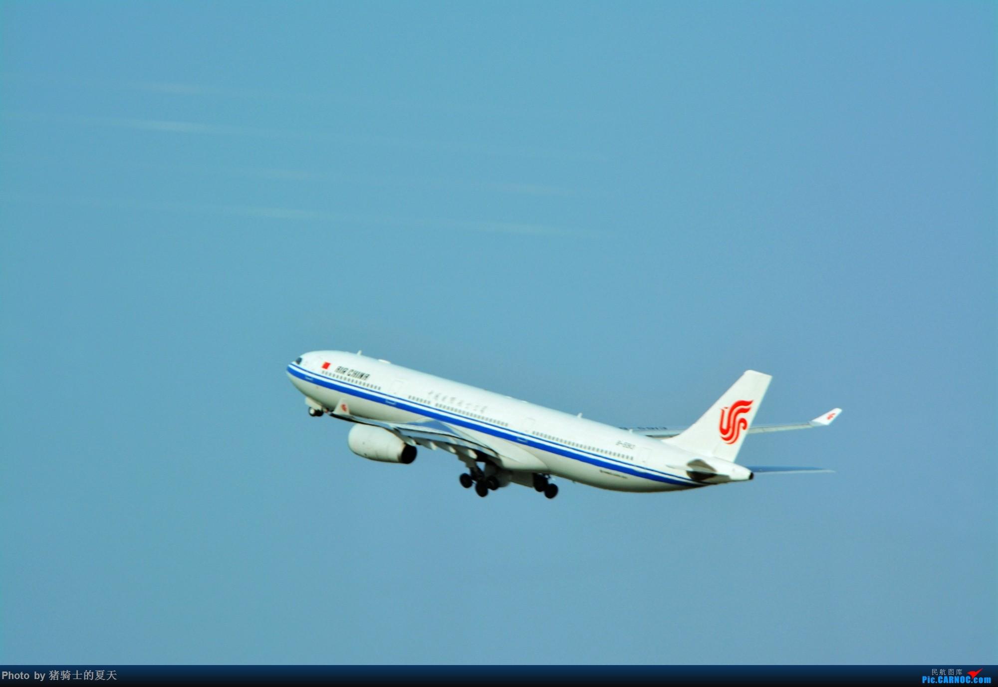 Re:[原创]2017年鸡鸭图 AIRBUS A330-300 B-5913 中国上海虹桥国际机场
