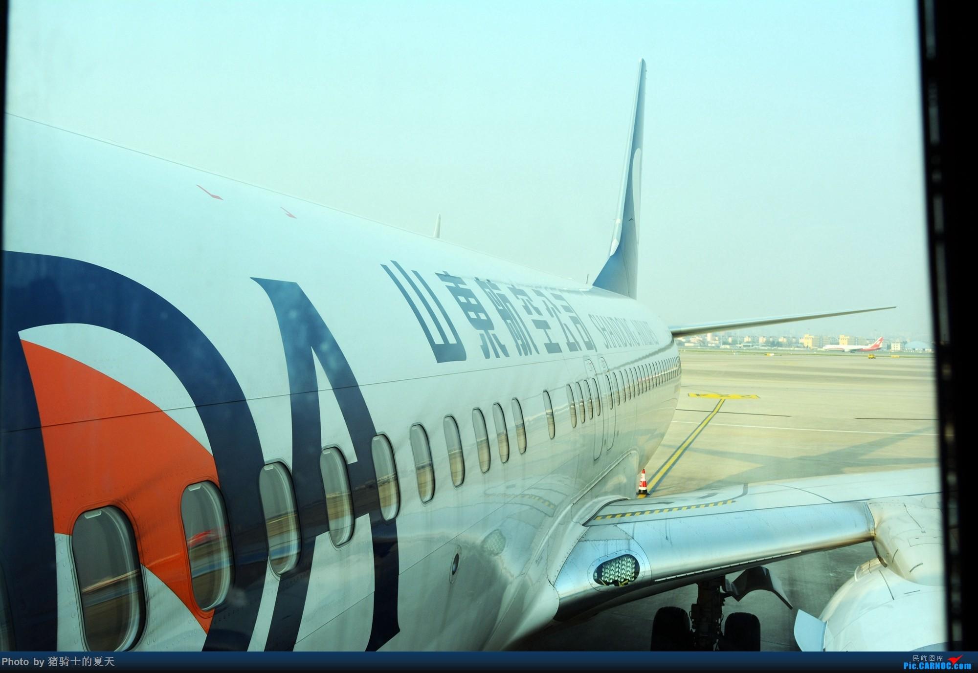 Re:[原创]2017年鸡鸭图    中国上海虹桥国际机场