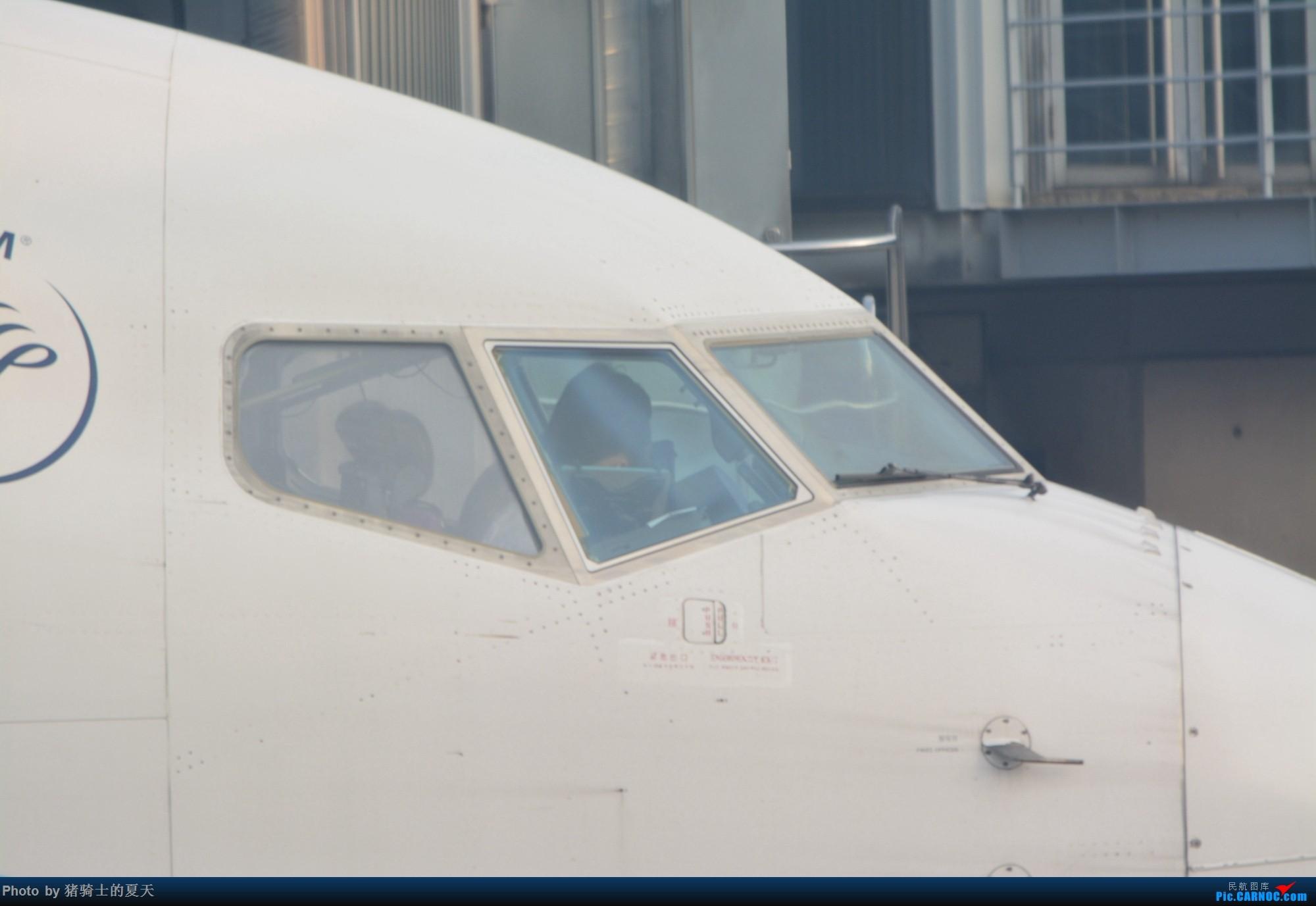 Re:[原创]2017年鸡鸭图 BOEING 737-800 B-7568 中国上海虹桥国际机场